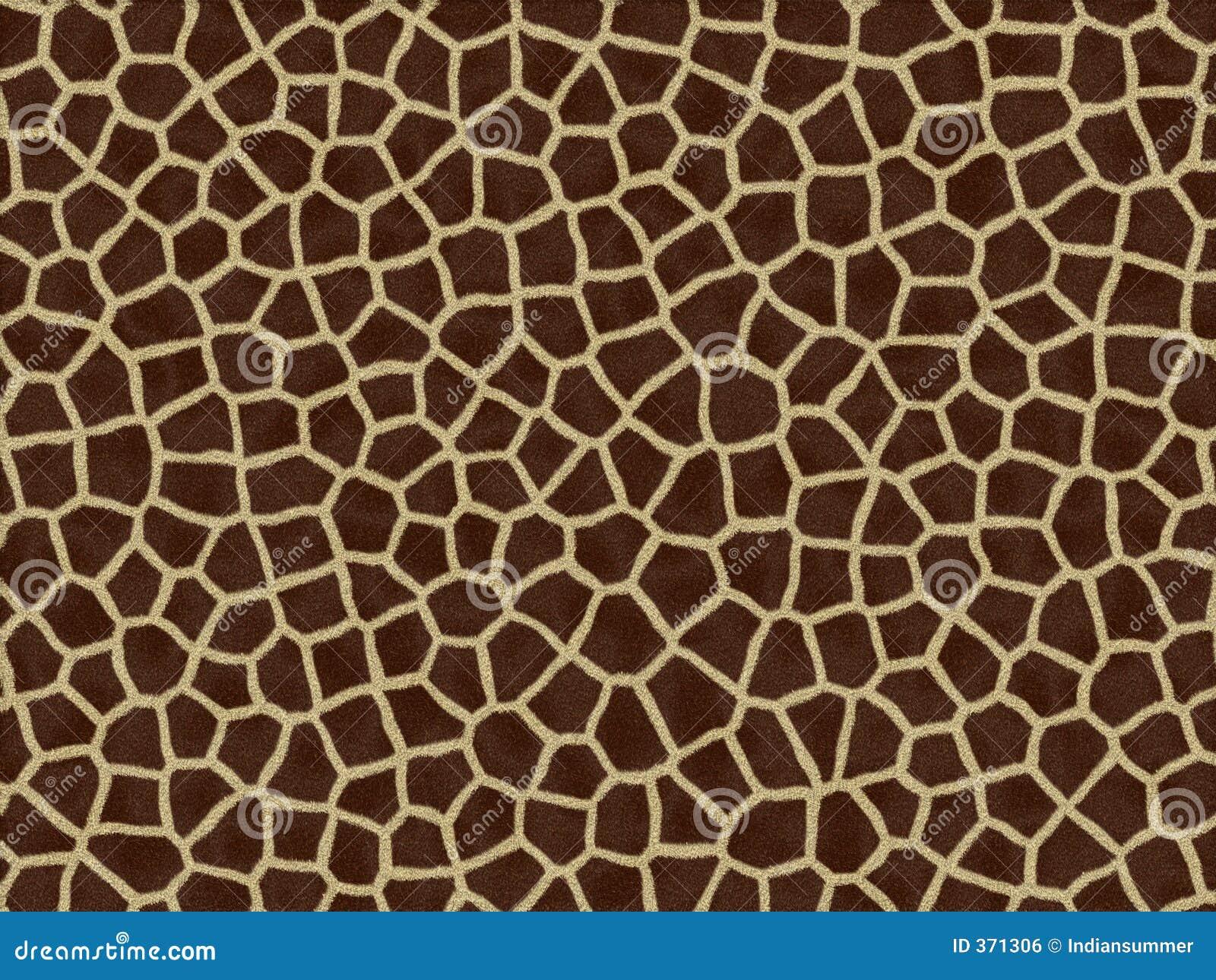 Struttura animale della pelliccia - giraffa