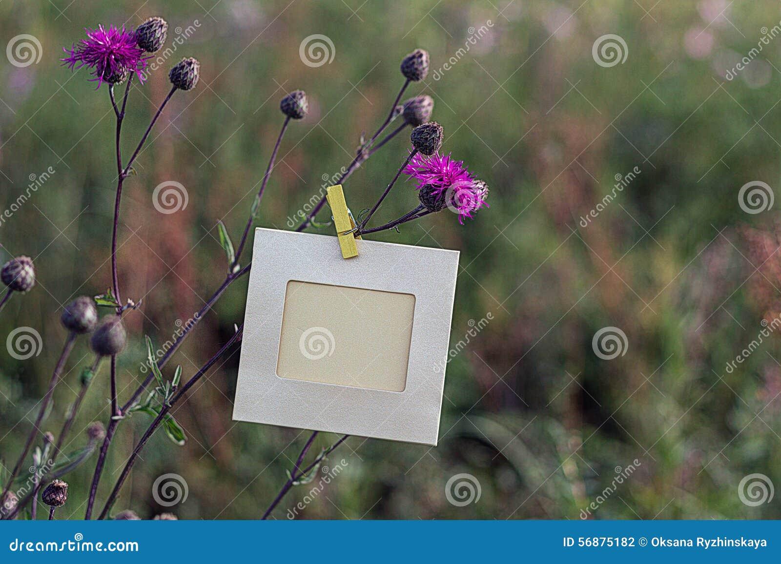 Struttura in bianco che appende sui fiori rosa all aperto