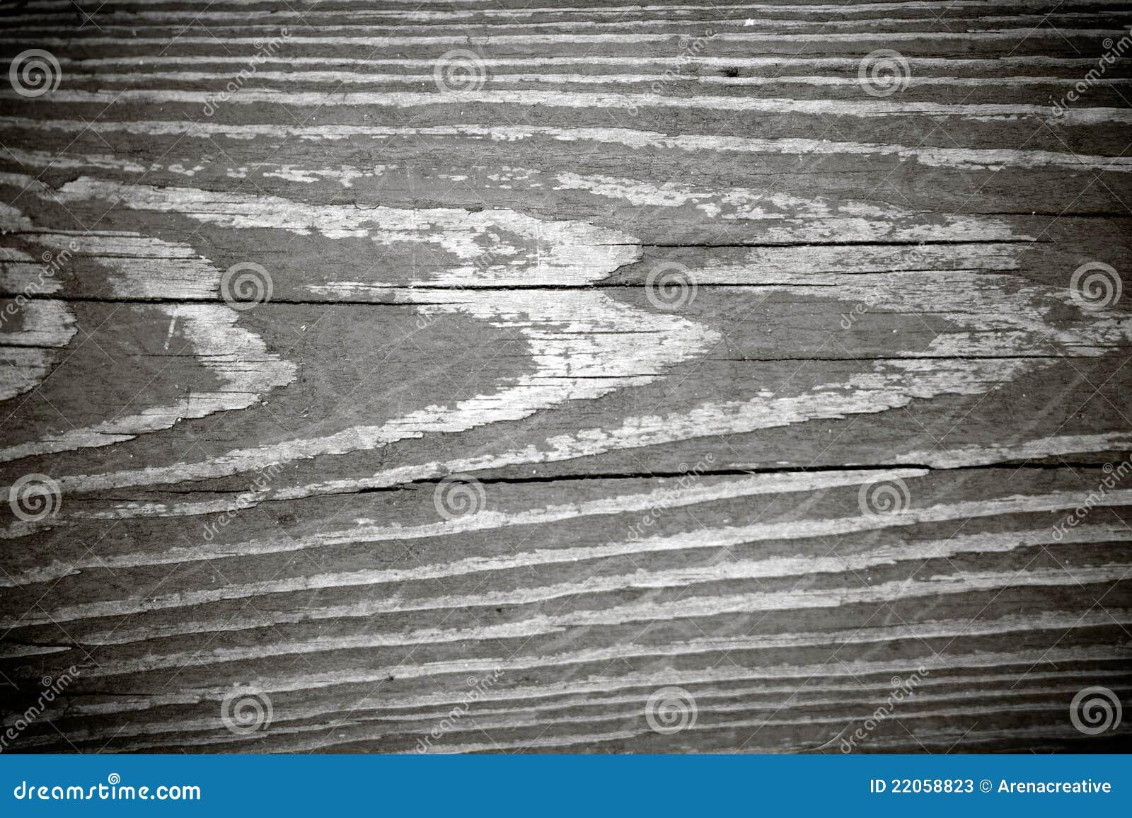 Legno Bianco E Nero : Struttura in bianco e nero della venatura del legno immagine stock