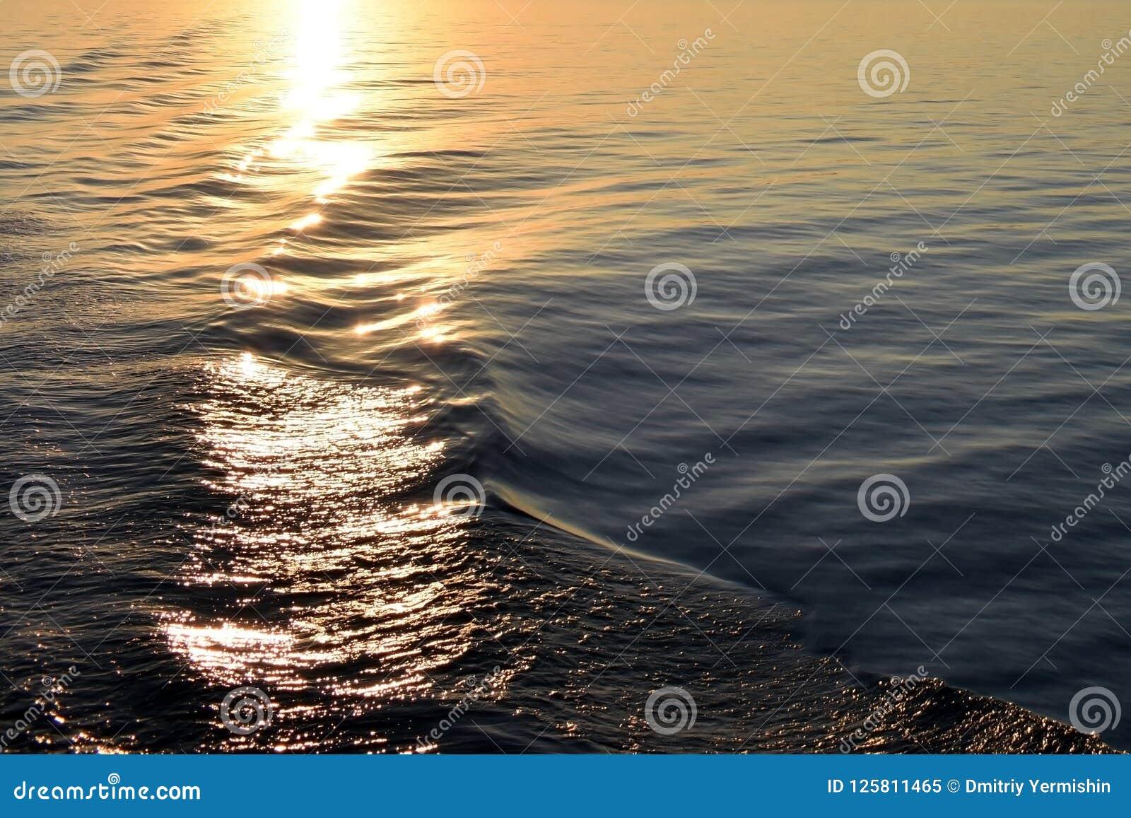 Struttura dell acqua di mare