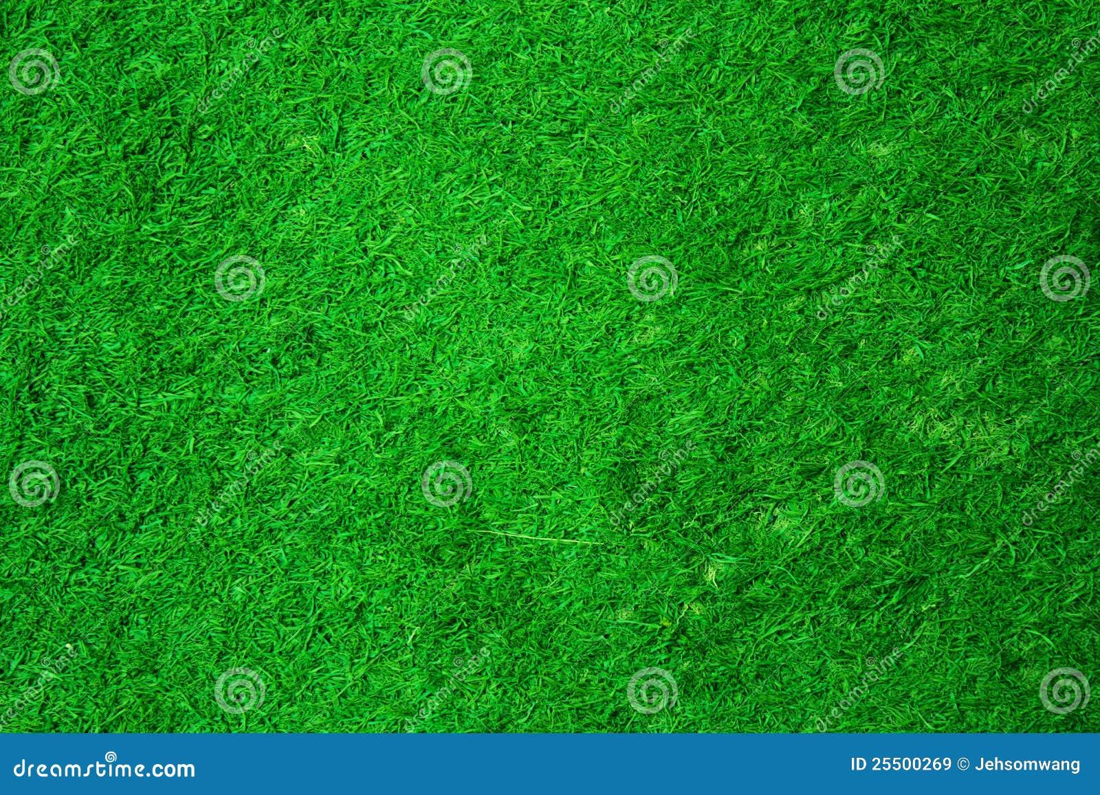 Struttura dell erba verde