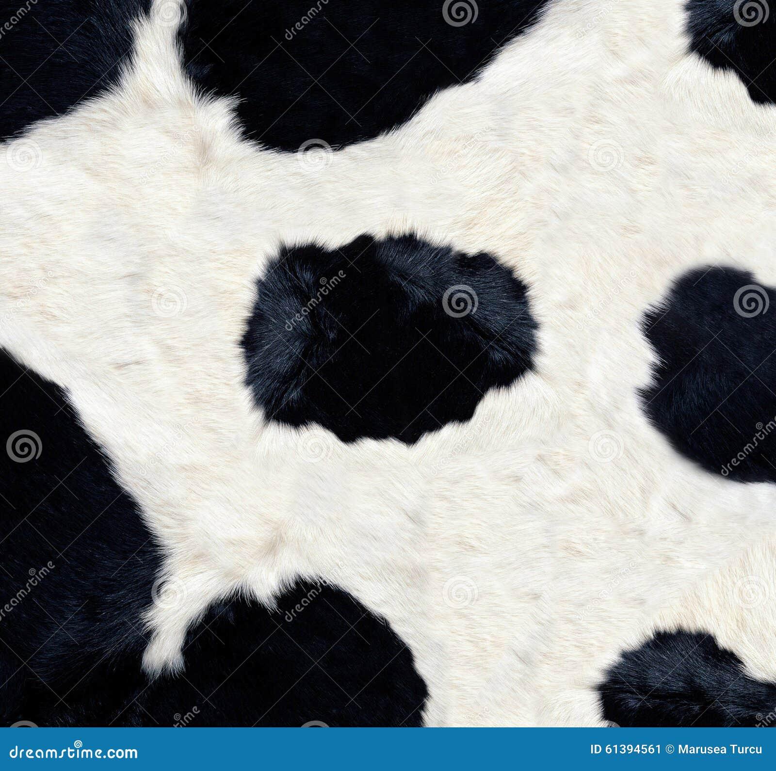 Struttura della pelle della mucca
