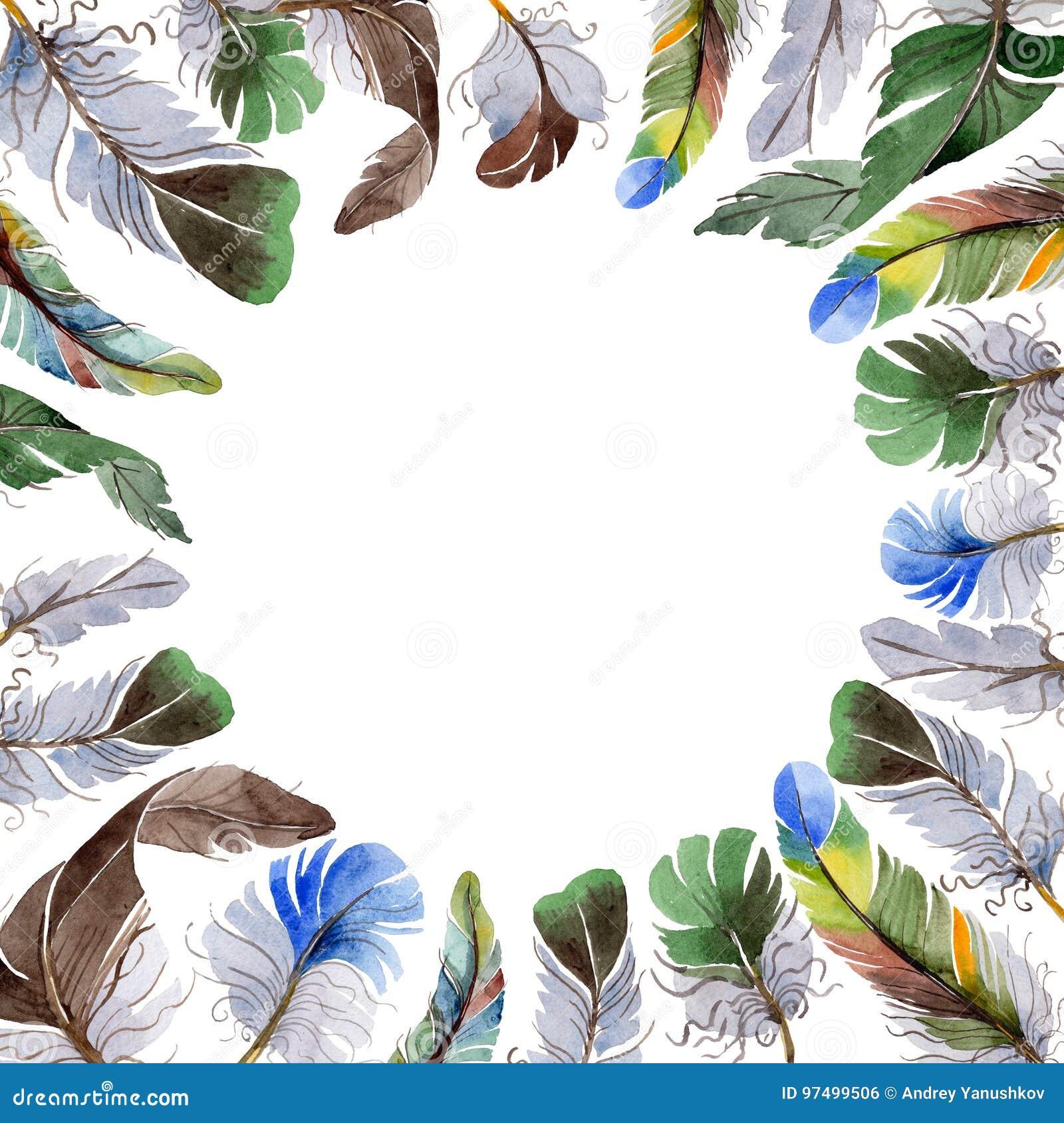Struttura della piuma di uccello dell acquerello dall ala