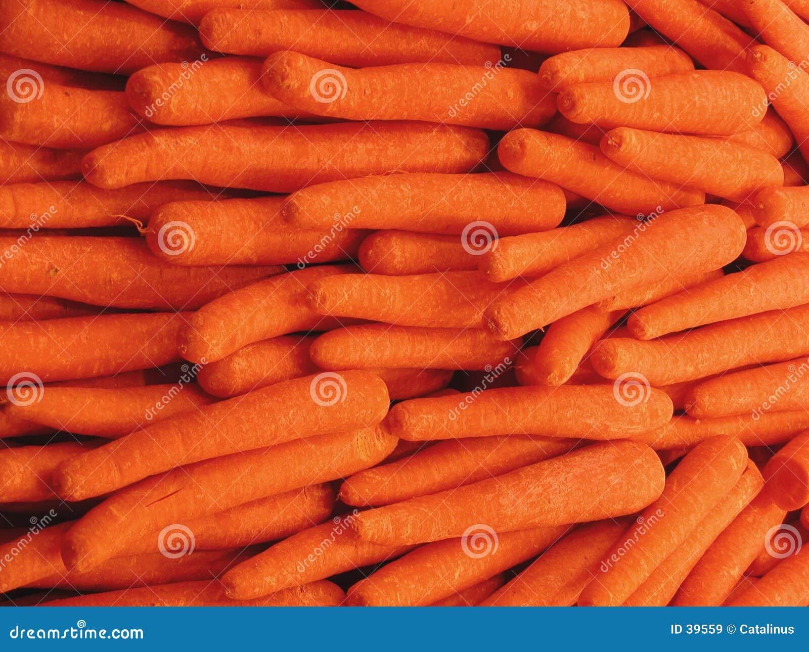 Struttura delle carote