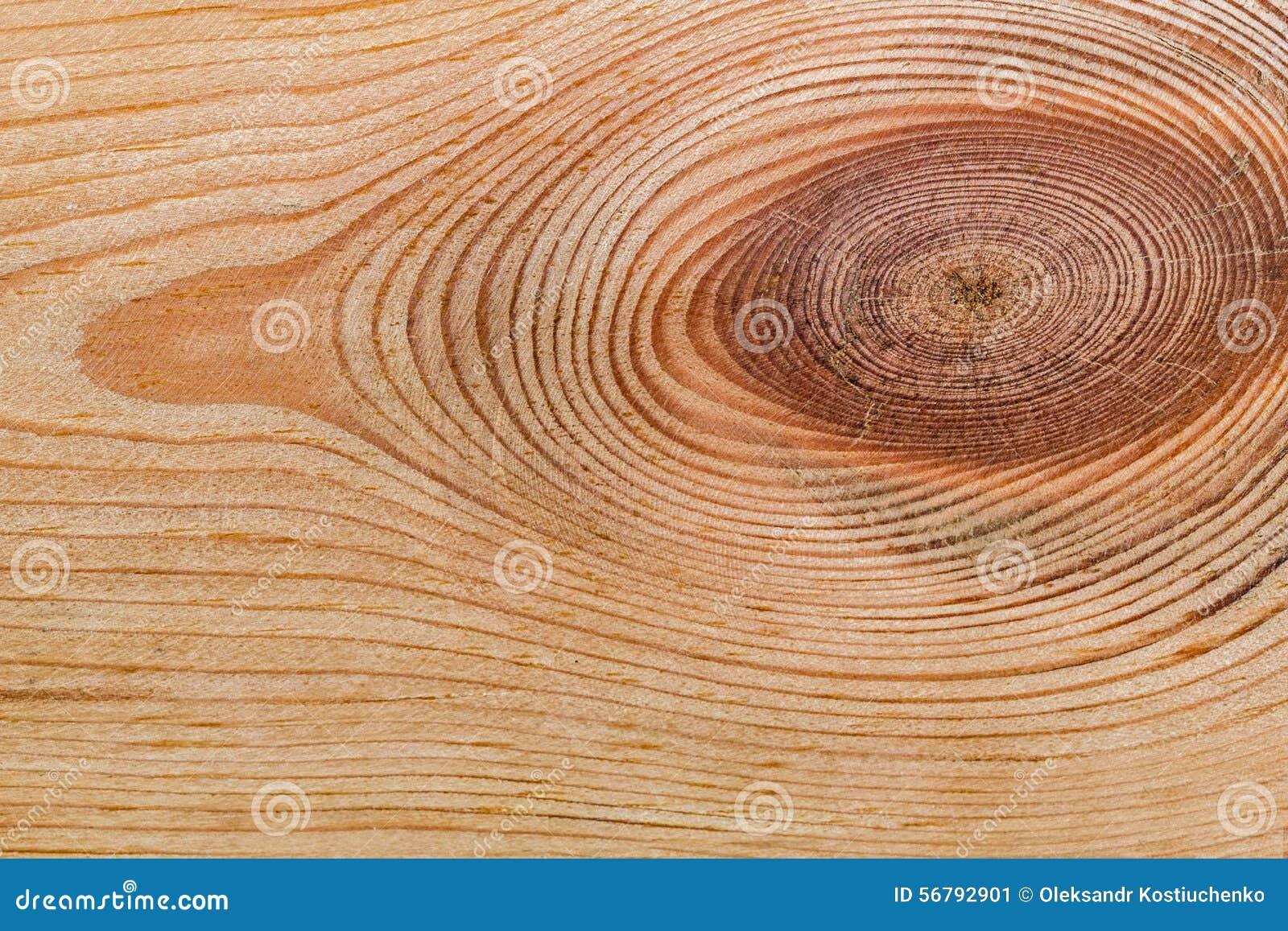 Struttura di legno con il modello naturale