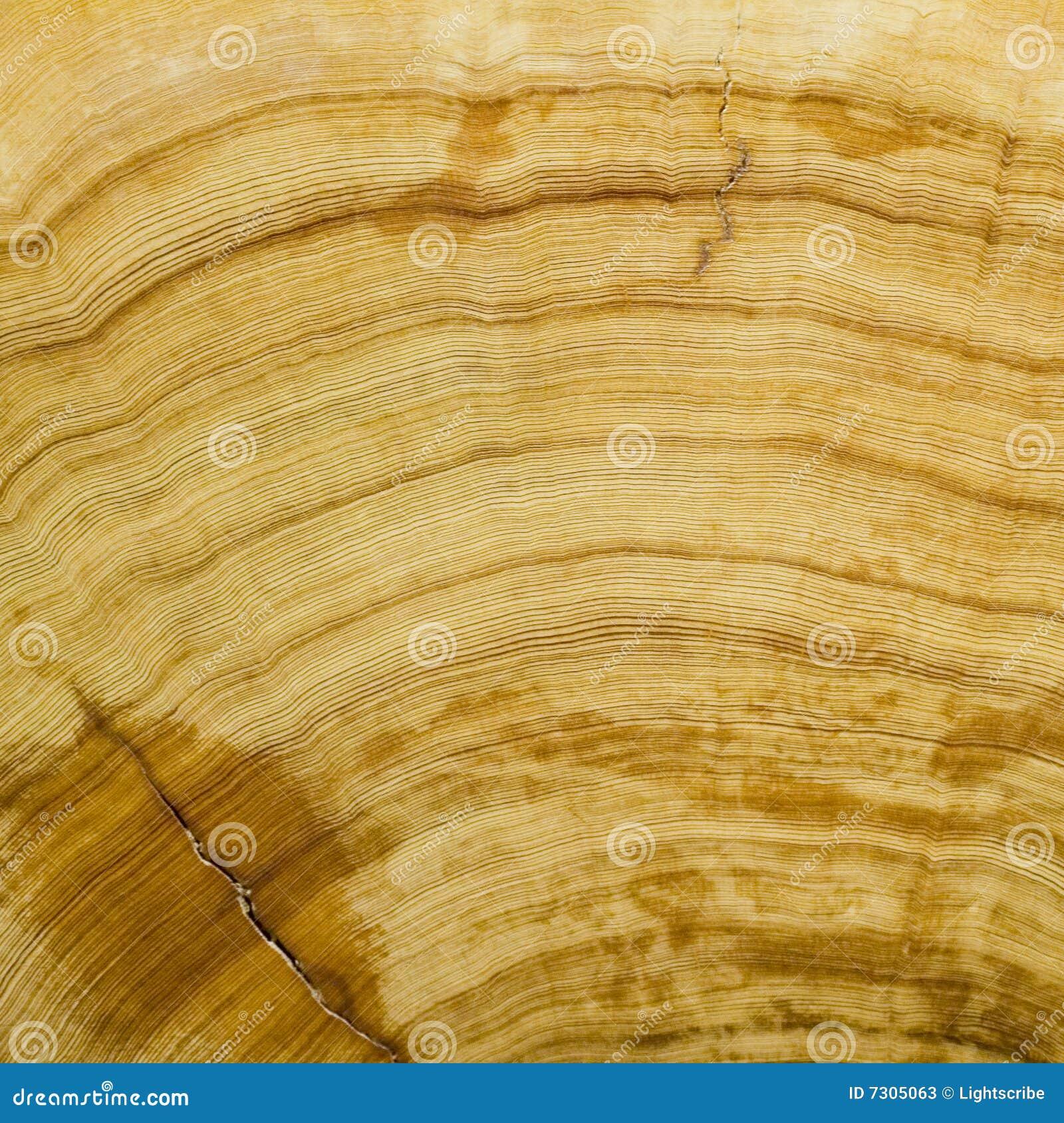 Struttura di legno della priorità bassa del granulo
