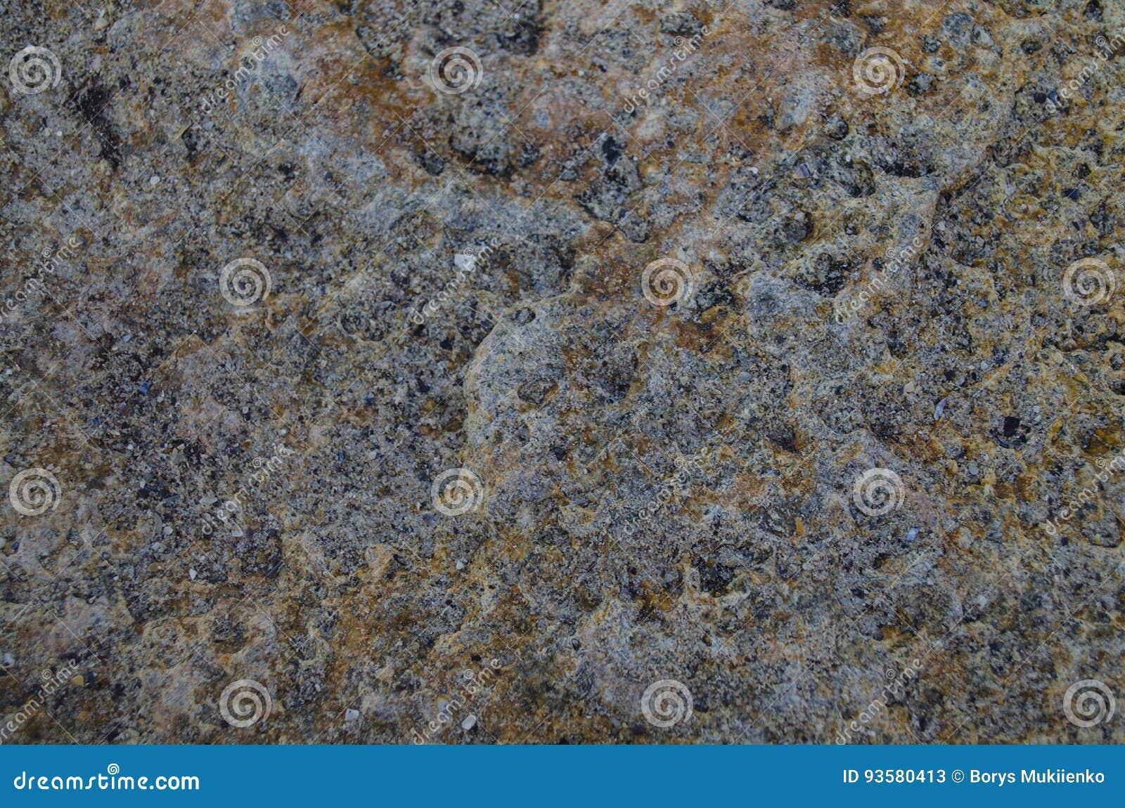 Struttura di pietra del mare