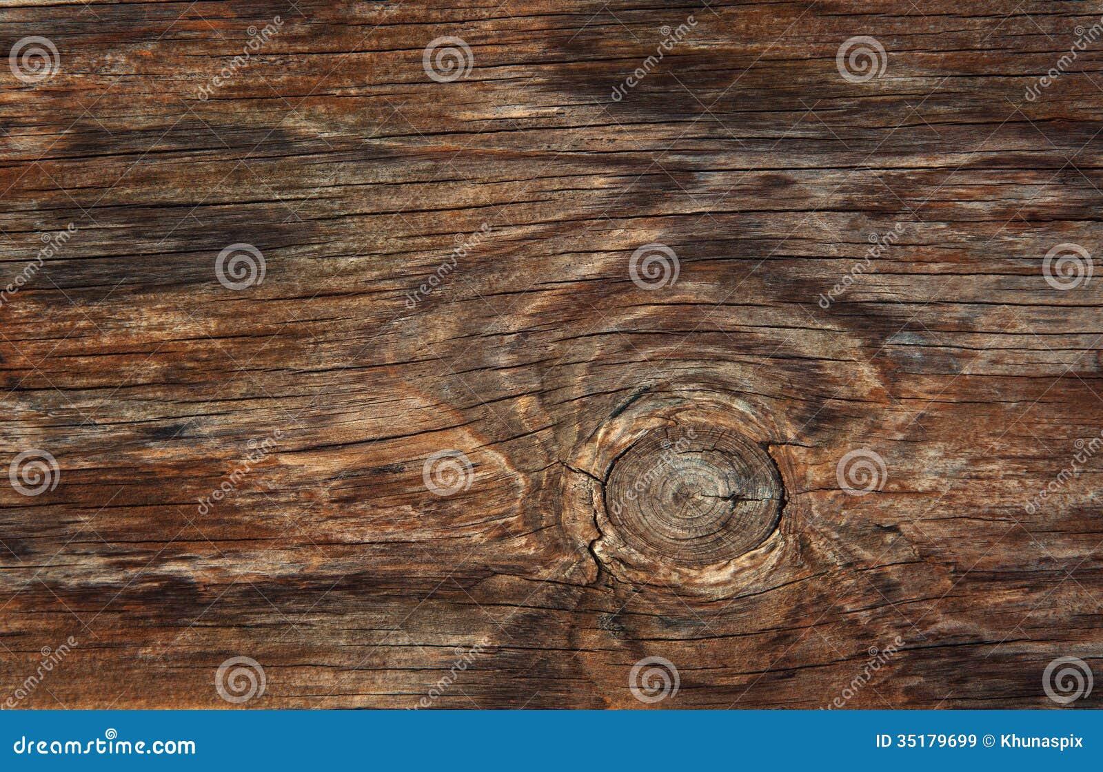 Struttura di uso del legno della corteccia come sfondo naturale
