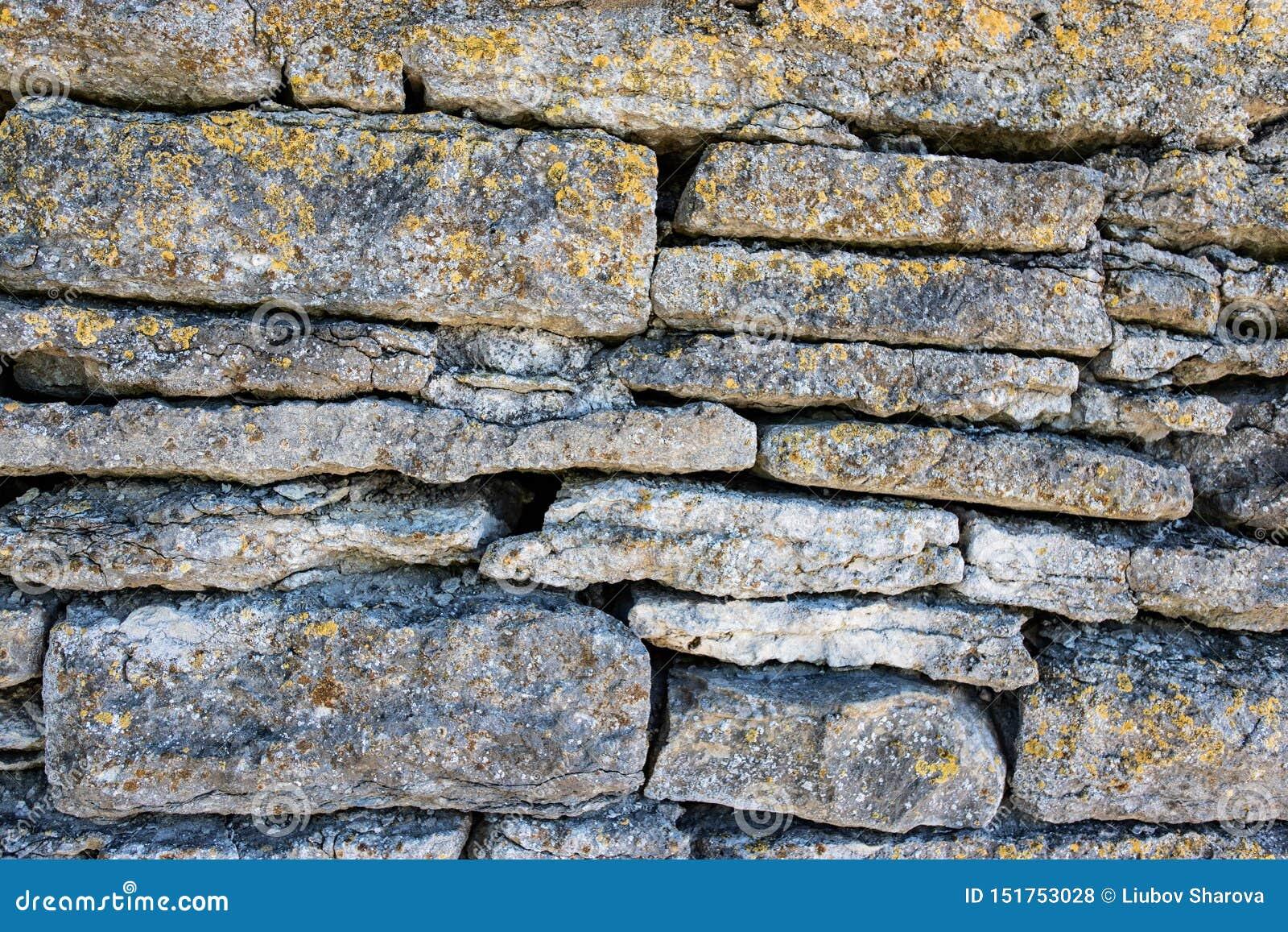 Struttura di vecchia parete della roccia per priorit? bassa