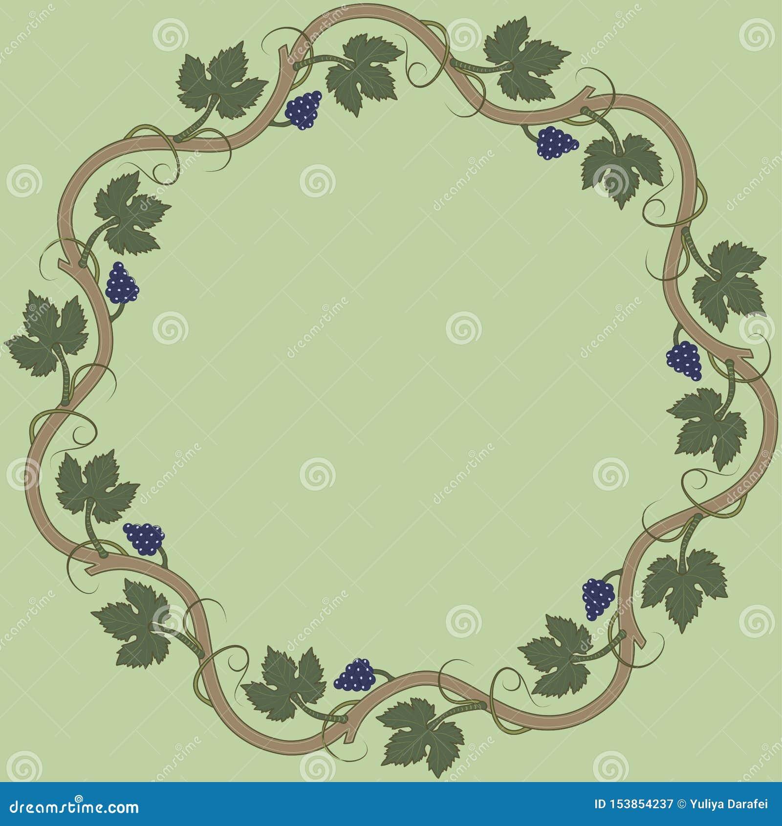 Struttura floreale medievale con il mazzo di uva, foglie dell uva, turbinii