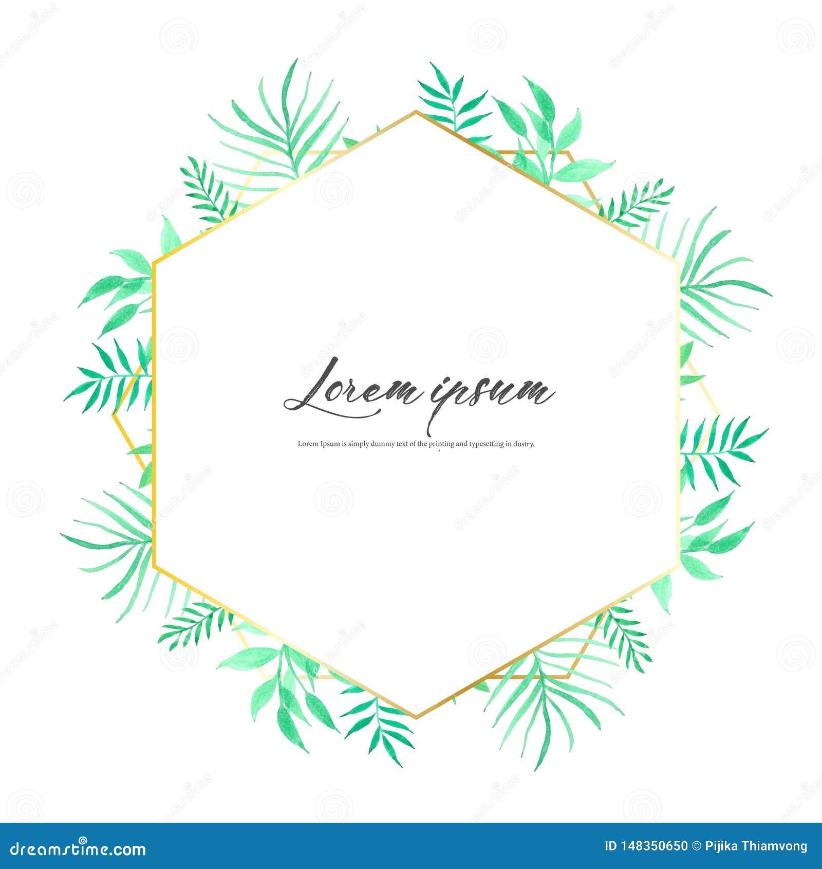 Struttura geometrica con l acquerello delle foglie, composizione botanica, elemento decorativo per la partecipazione di nozze, ve