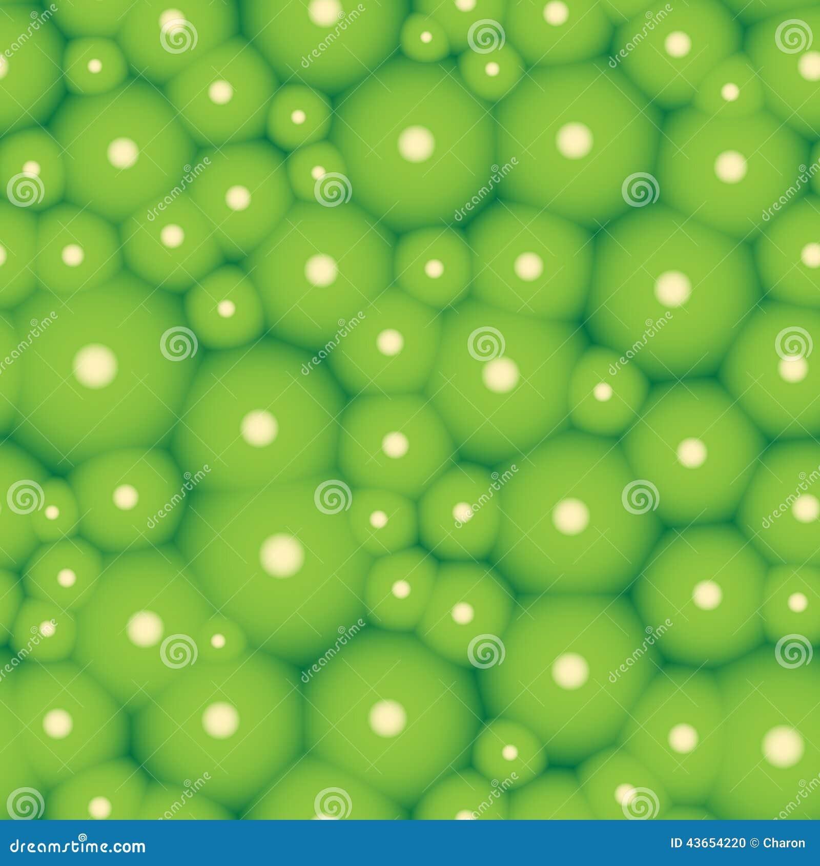 Struttura senza cuciture organica del modello verde delle cellule
