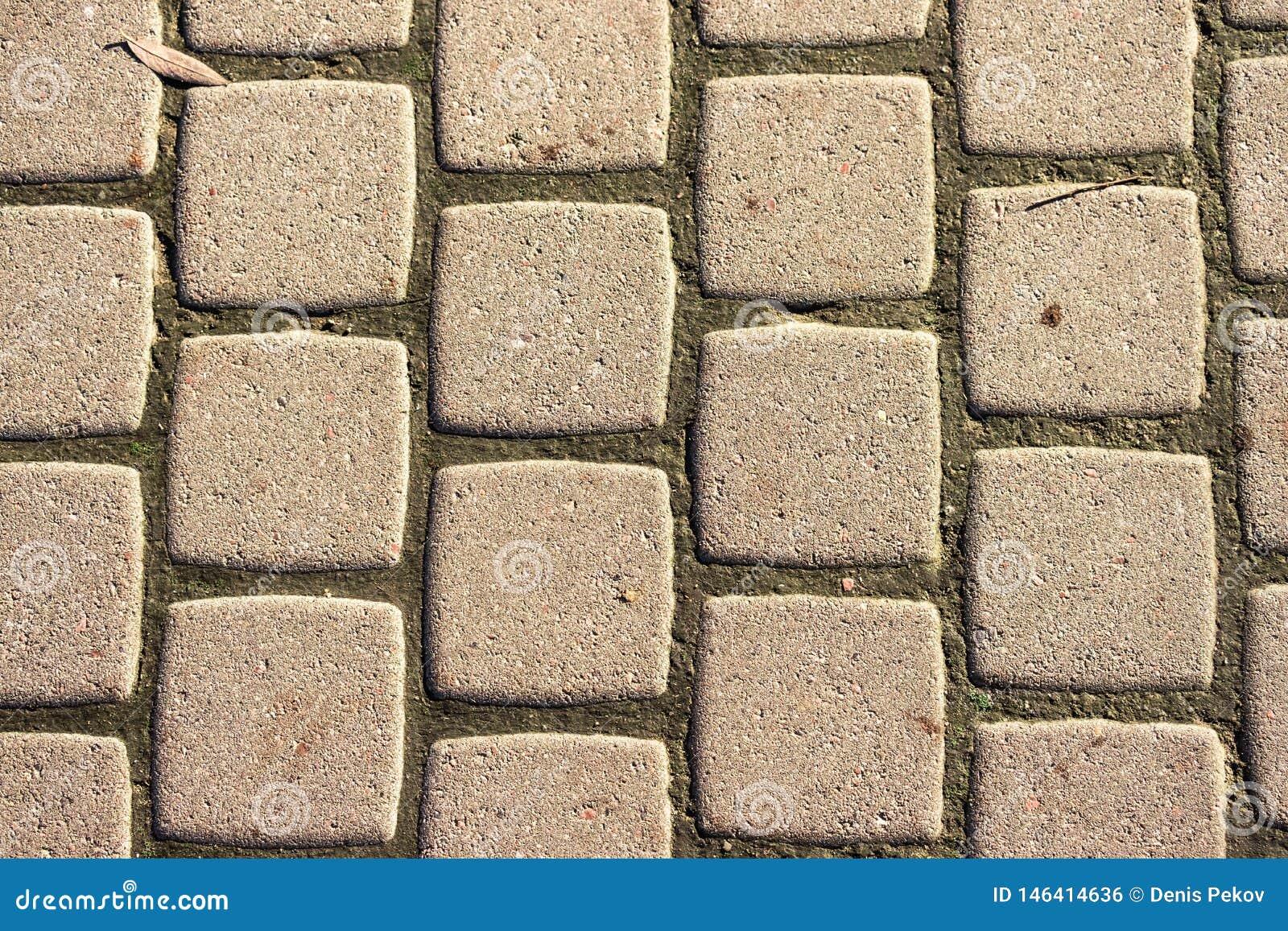 Strutturi la pavimentazione delle mattonelle