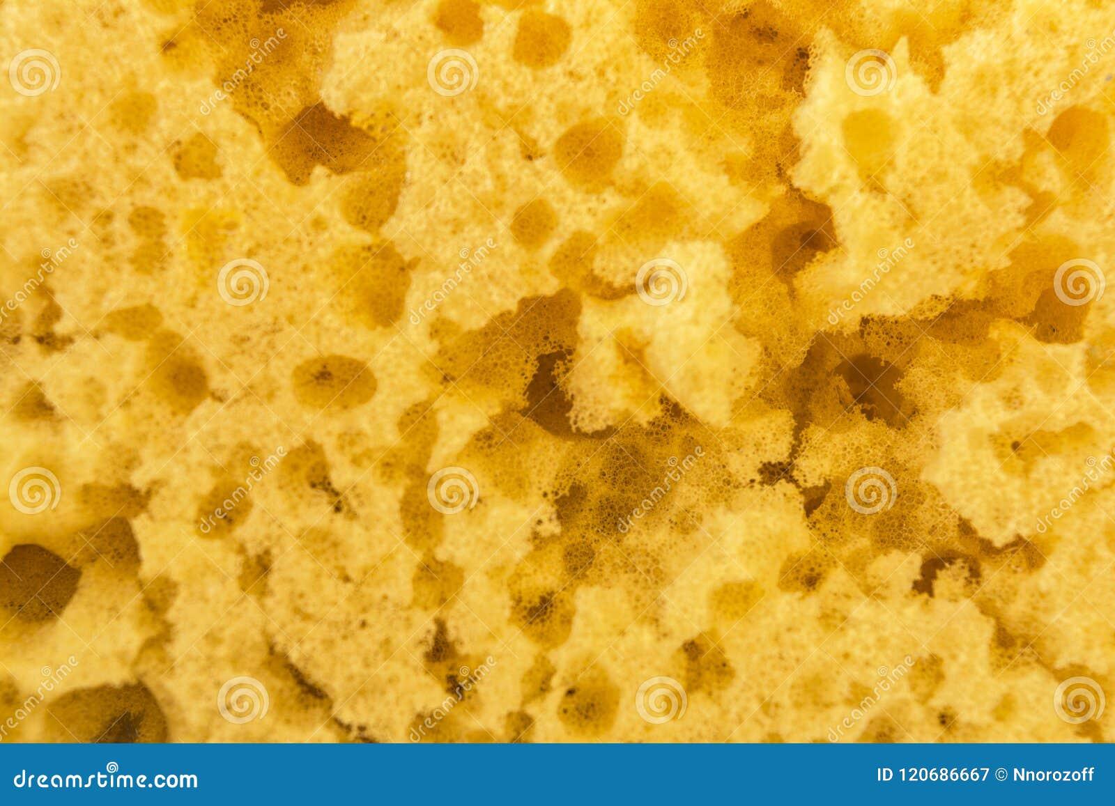 Strutturi la spugna gialla consumata per lavare i piatti, fondo astratto del primo piano