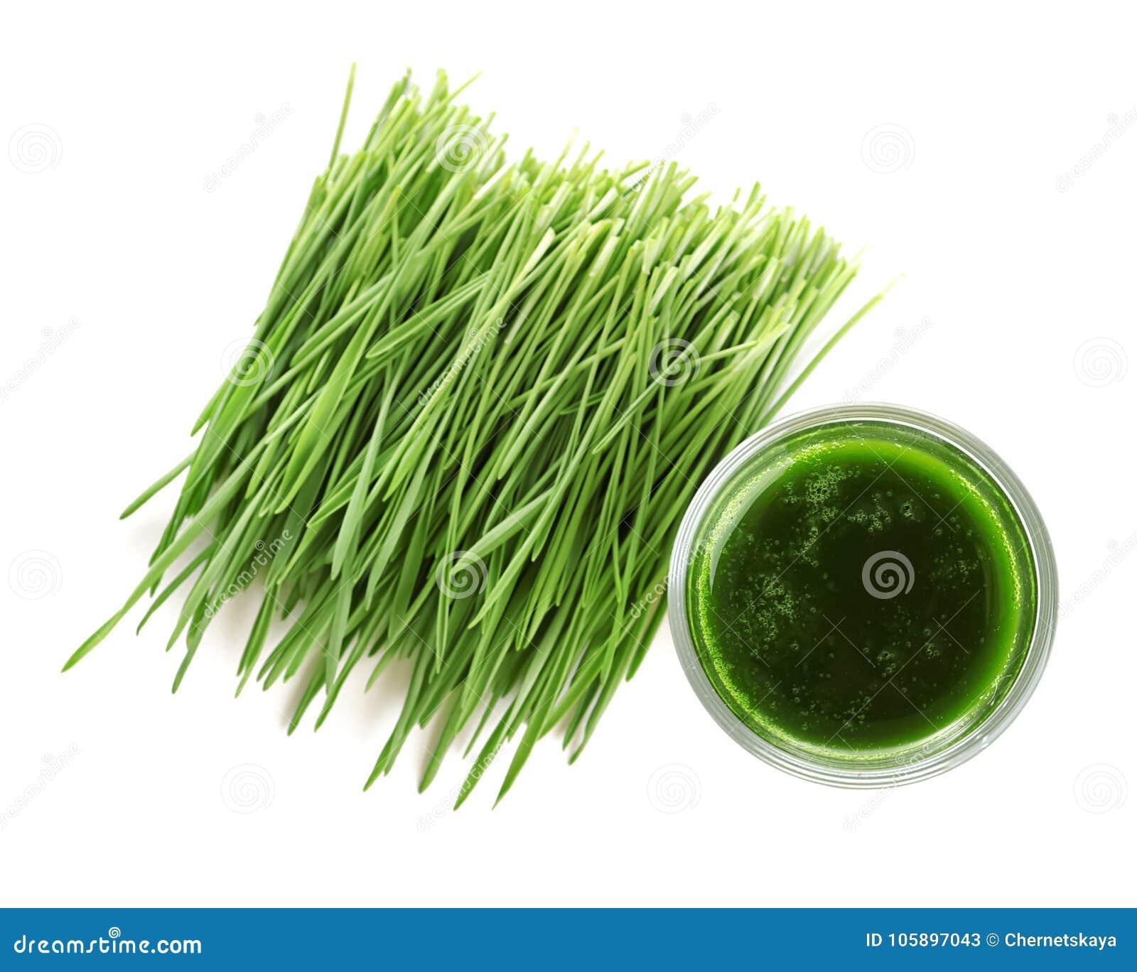 Strzał pszeniczny trawa napój