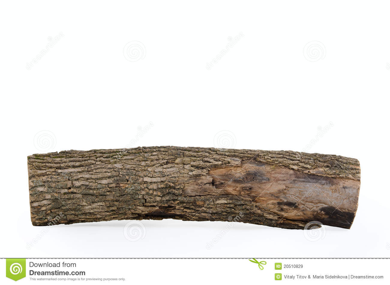 Stub Log With Wooden Texture Isolated Stock Image - Image ...
