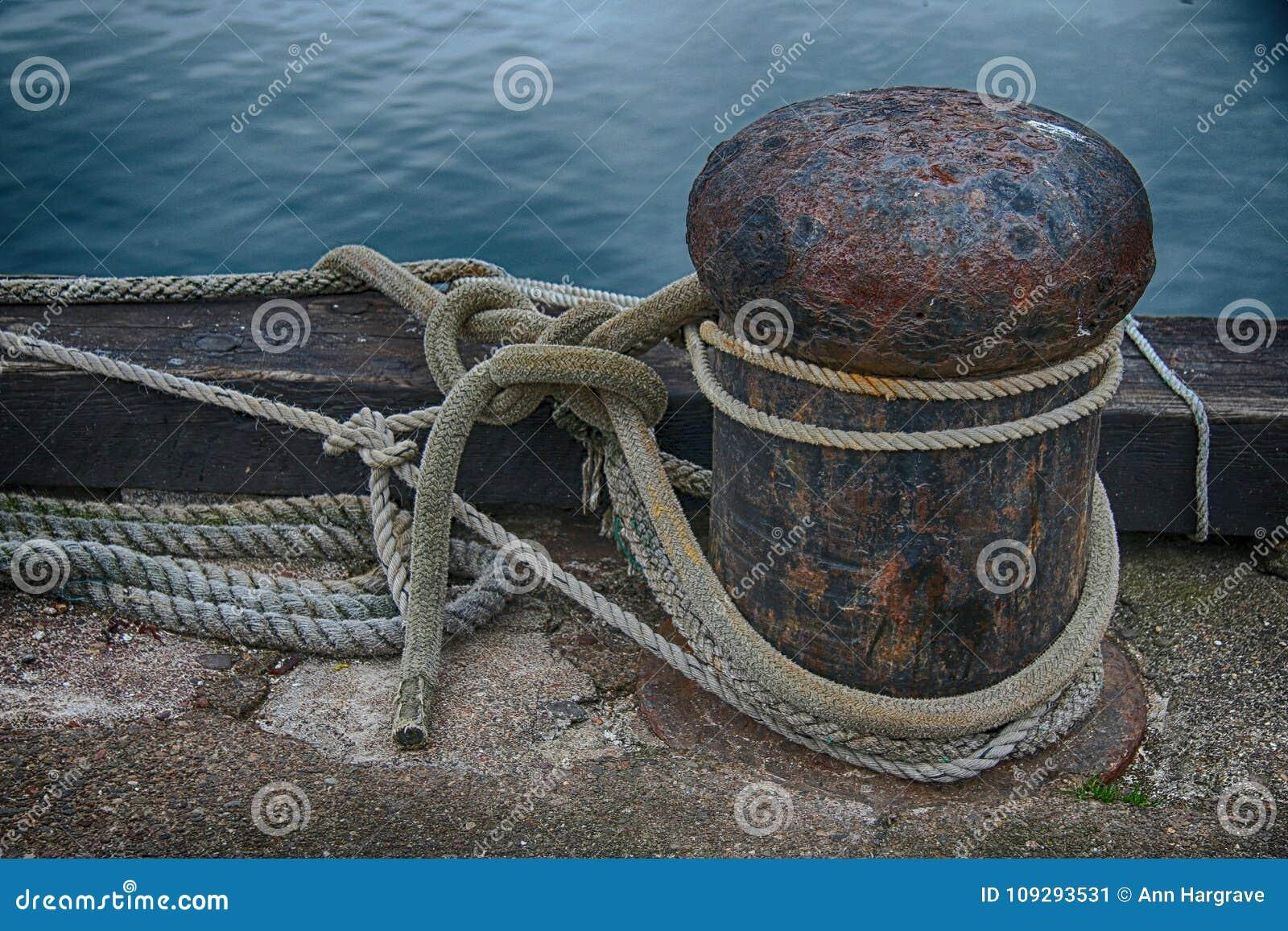 Studie van Marine Rope