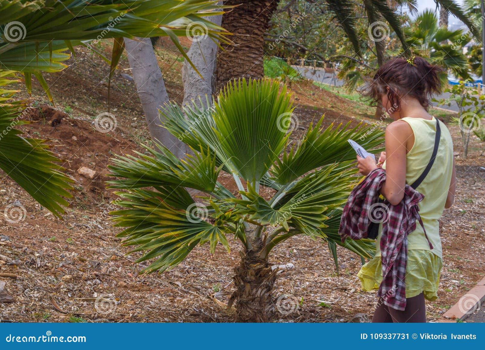Studing växter för kvinna i botanisk trädgård i tropisk del