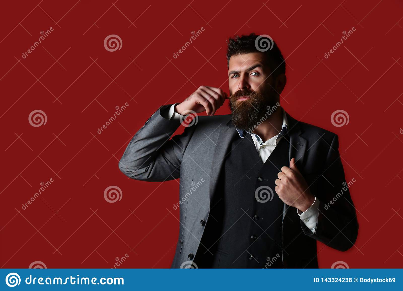 Studio portrait of a bearded hipster man. Male beard and mustache. Handsome stylish bearded man. Bearded man in suit and