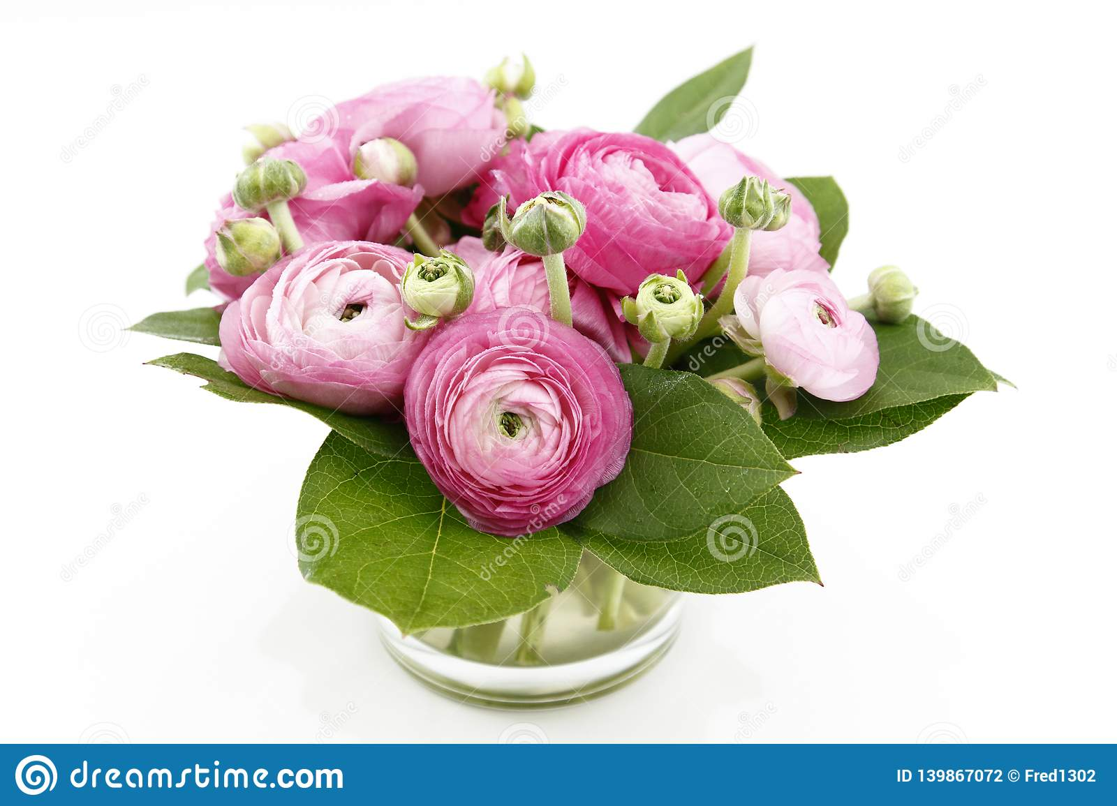 A Small Pink Bunch Of Season Flowers Ranunculus Stock Photo