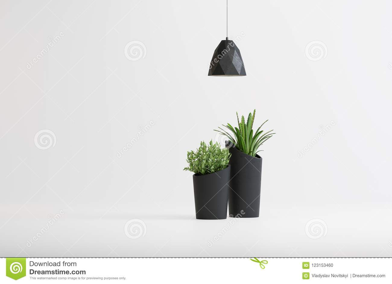 Studioskott av lampor och växter i vaser