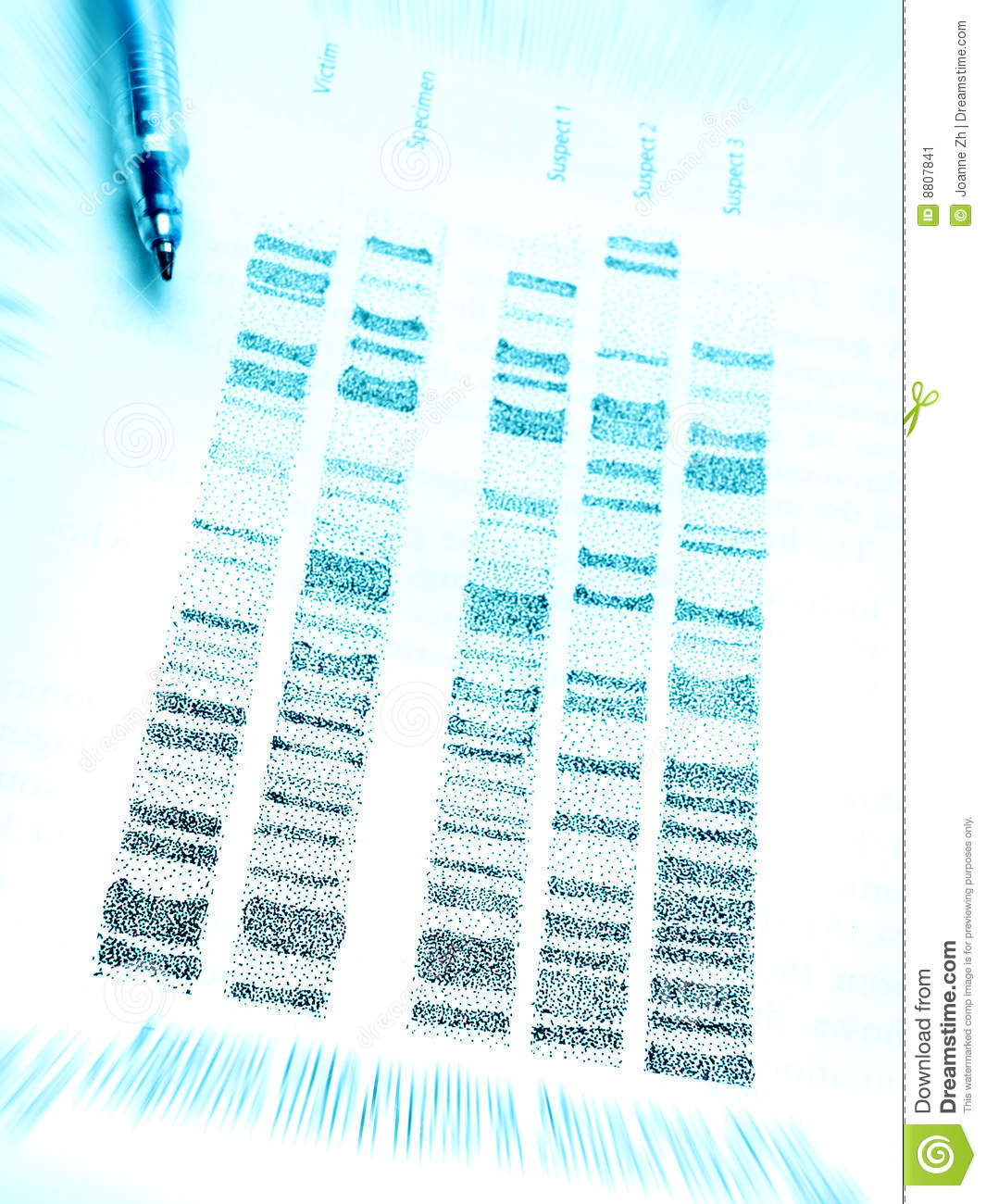 dna in forensic science Forensics how accurate is dna evidence fingerprints read forensic science articles on the successes and limitations of identification techniques.