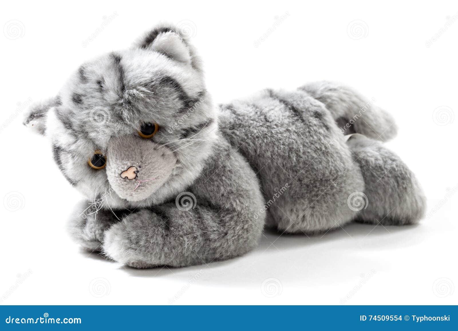 Stuffed Animal Cat Stock Photo Image Of White Background 74509554
