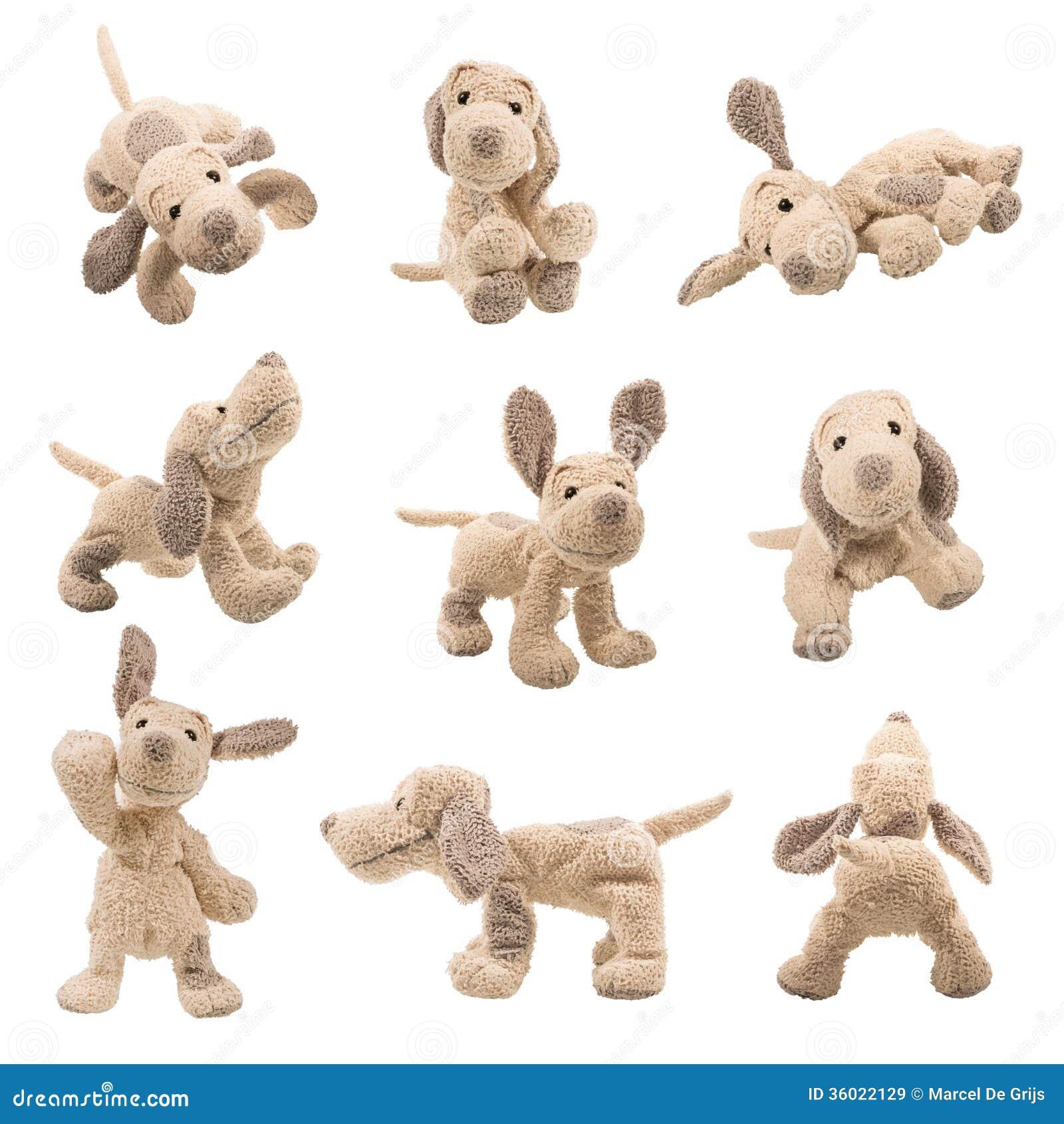Set Of Dog Stuffed Animals, Stuffed Animal Dog Stock Image Image Of Bear Showing 36022129