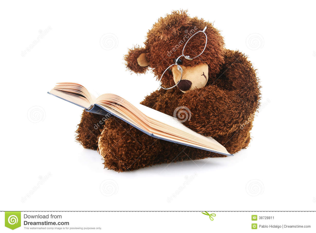 stuffed bear reading a book isolated on white stock image image of