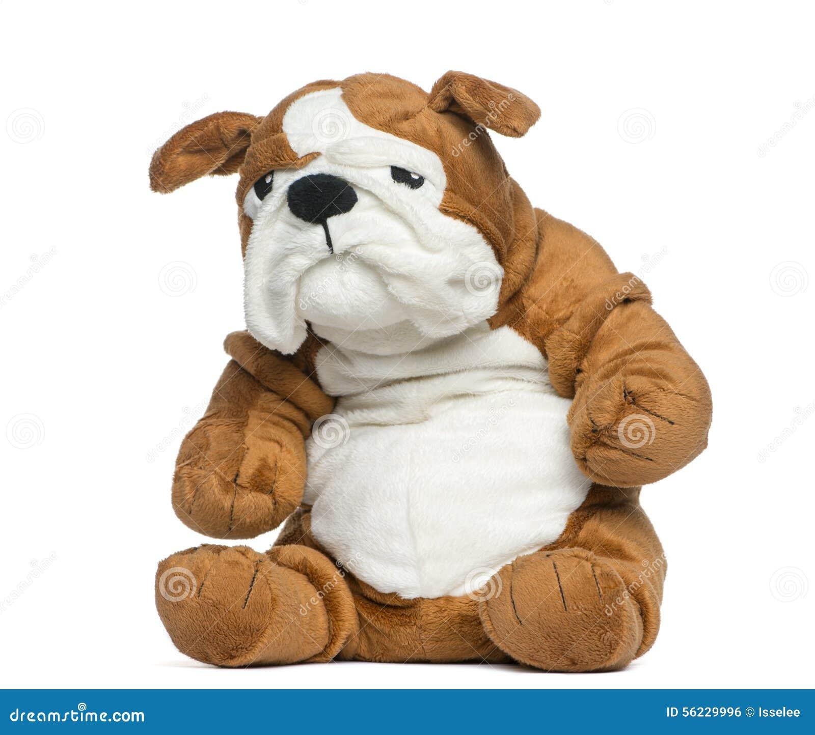 stuffed english bulldog toy stock photo  image  - background bulldog english stuffed