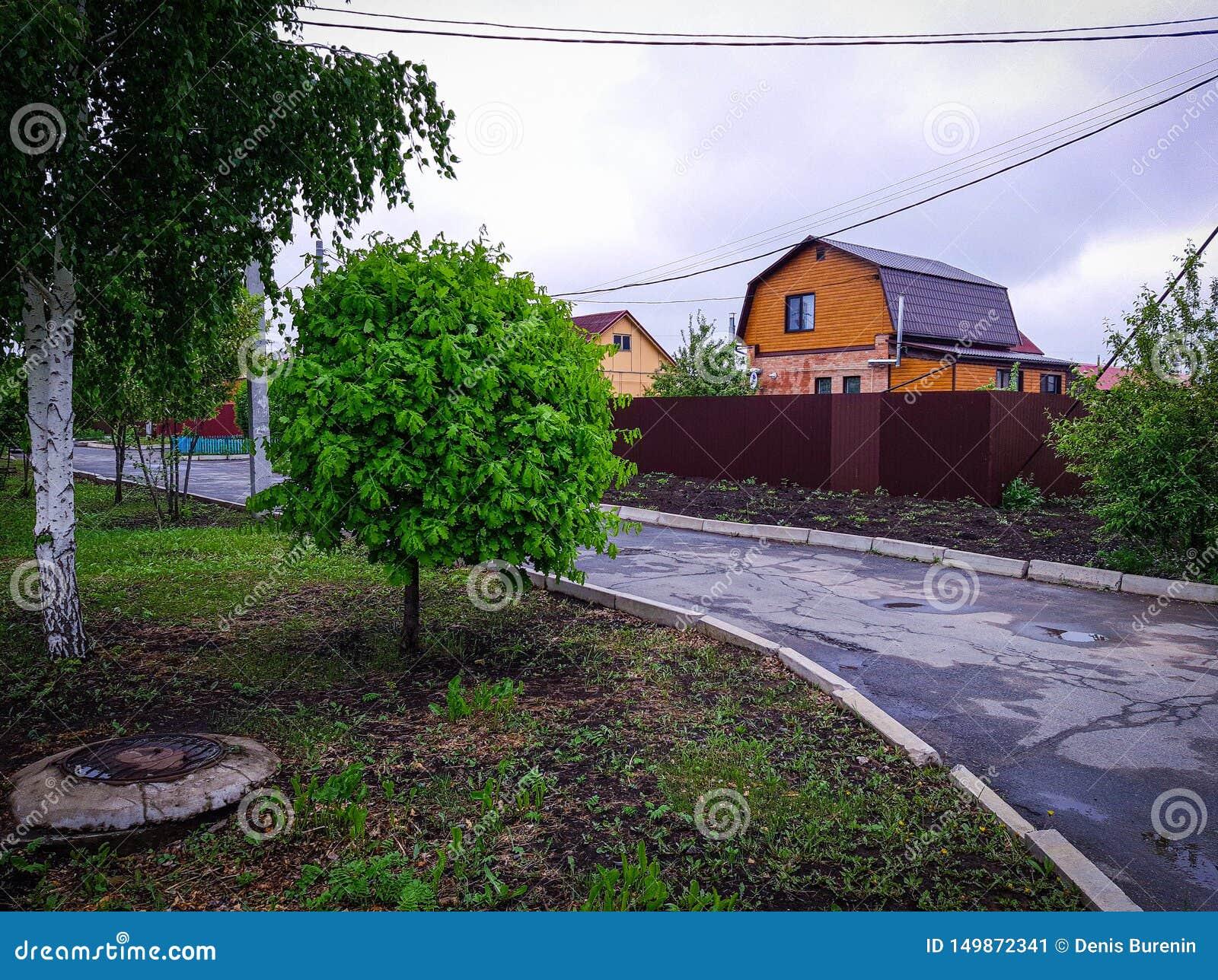 Stugbystugor, träd, hus, gränd