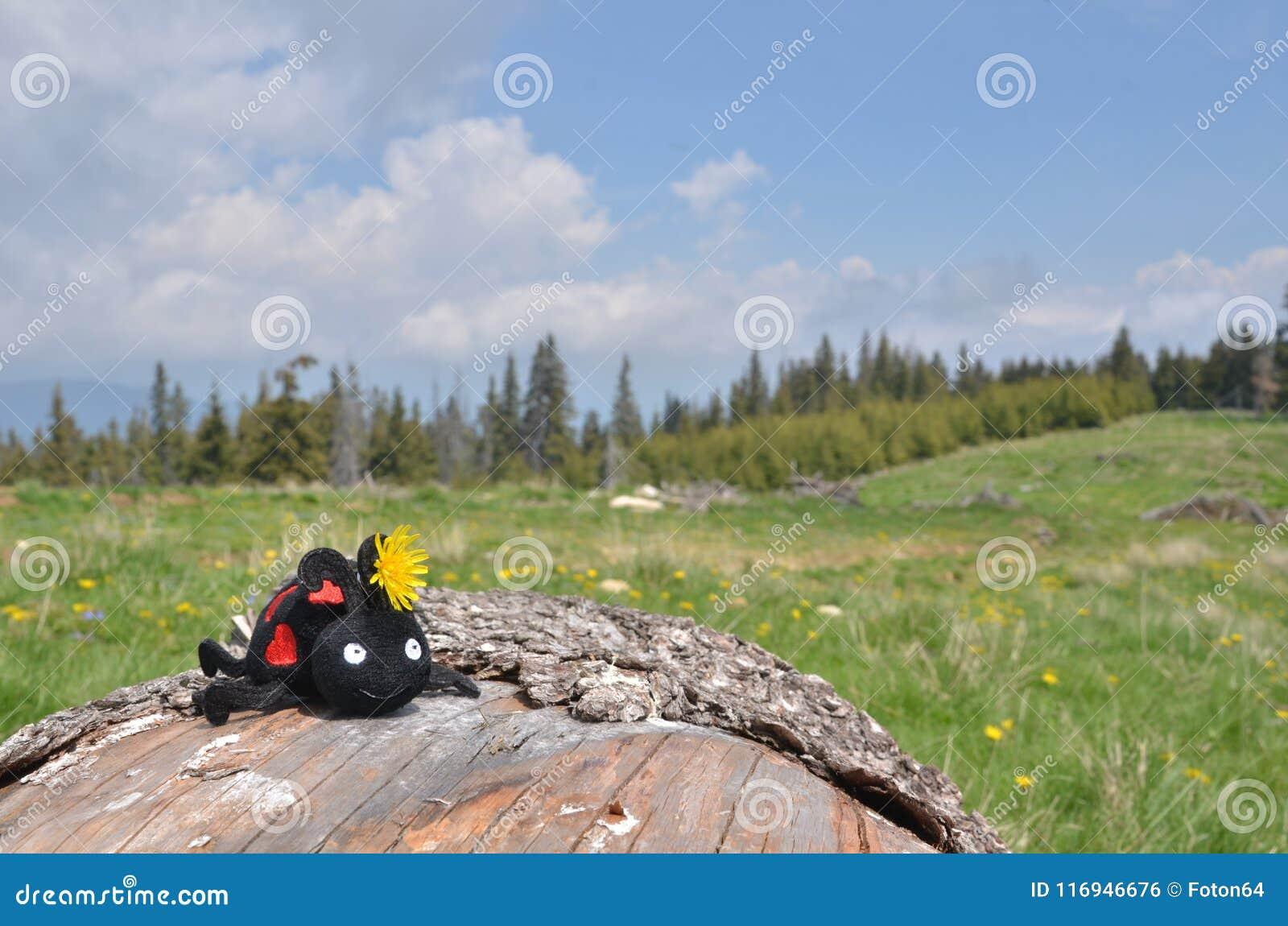 Stuk speelgoed lieveheersbeestje op houten logboek, weide