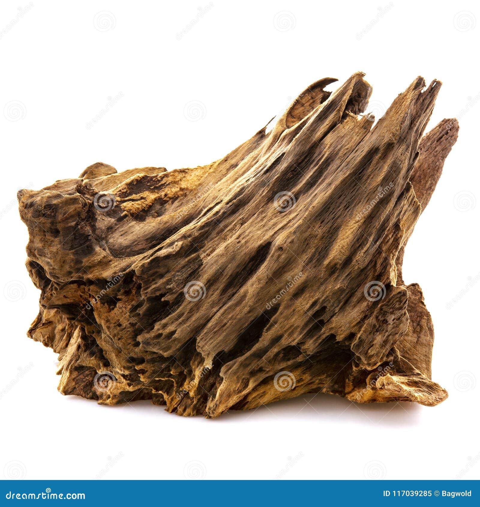 Stuk van goed versleten drijfhout
