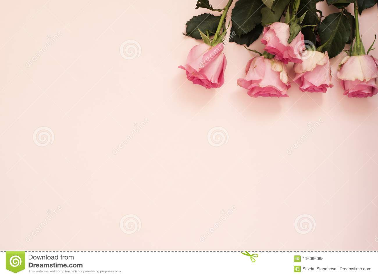 Stunning Pink Bouquet Of Roses On Punchy Pink Background Copy Space