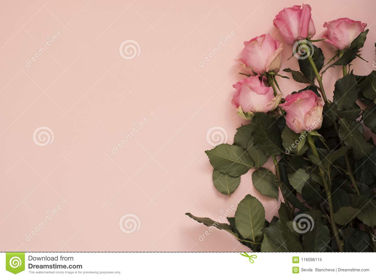 Stunning Pink Bouquet Of Roses On Punchy Pink Background. Copy Space ...
