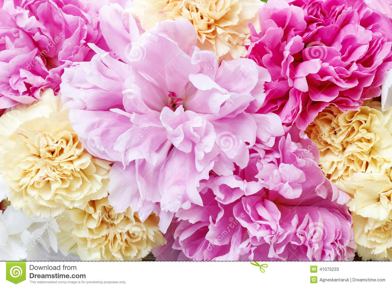 The Pink Peonies stunning pink peonies, yellow carnations and roses stock photo