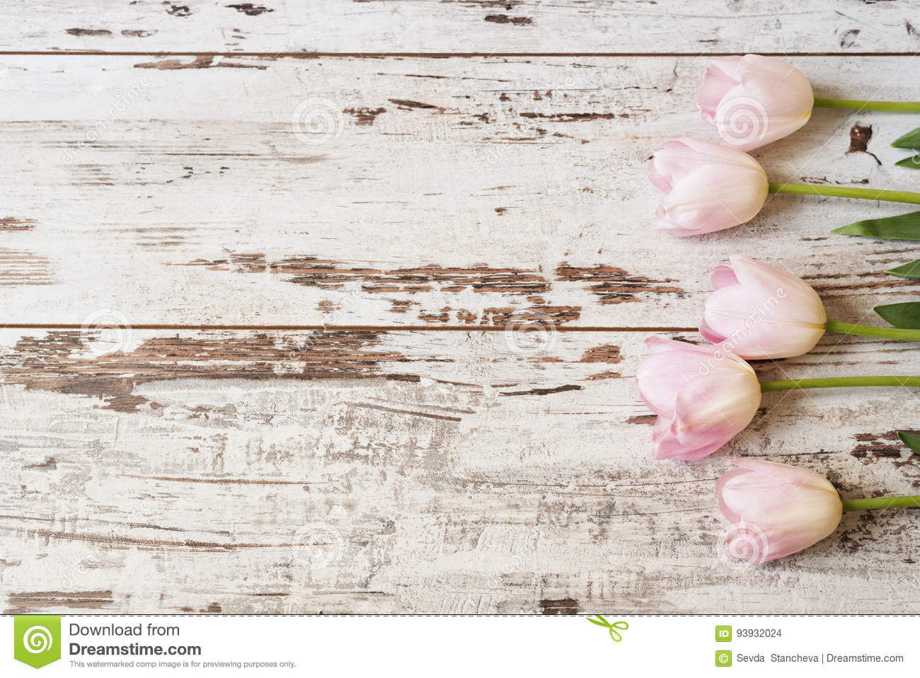 Stunning Pink Tulips On White Light Rustic Wooden Background Copy