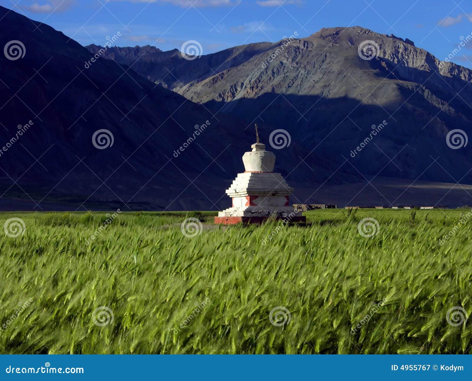 Stupa auf dem Gerstengebiet