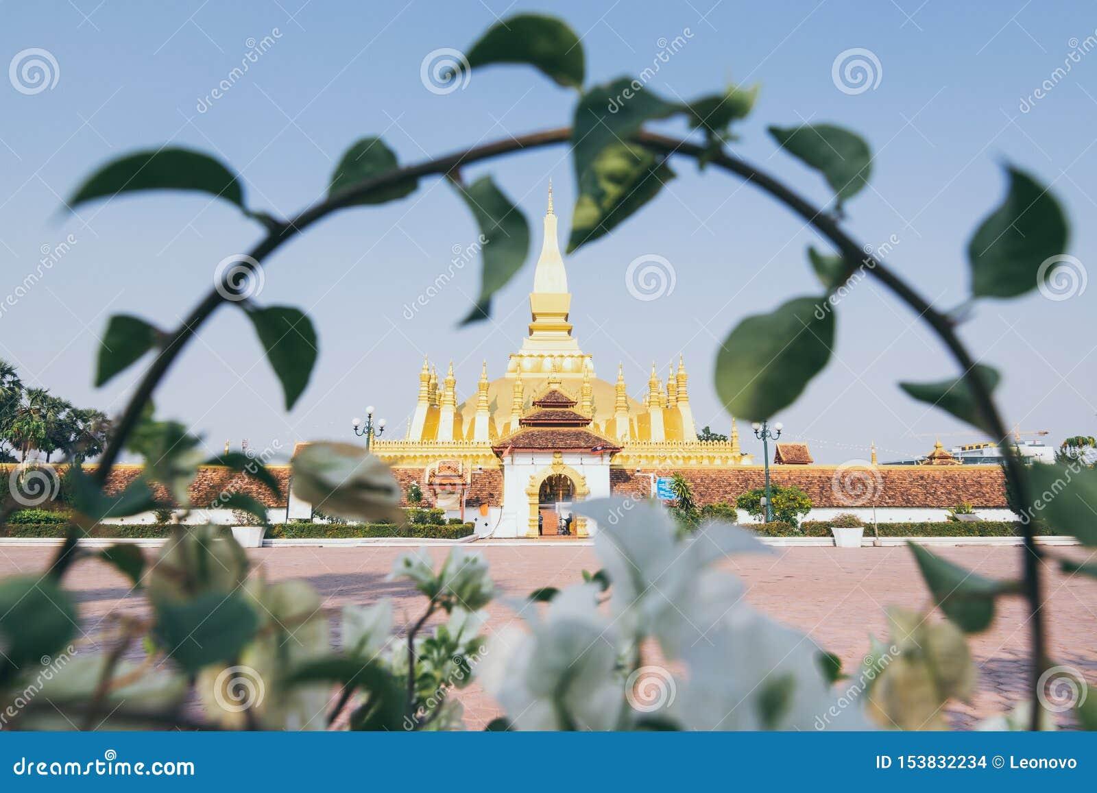 Stupa de oro del cual Luang enmarcado con la rama del arbusto en Vientián, Laos