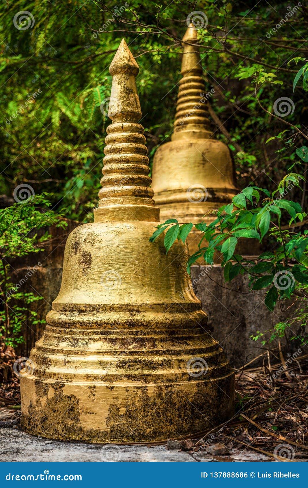 Stupas dourados na selva