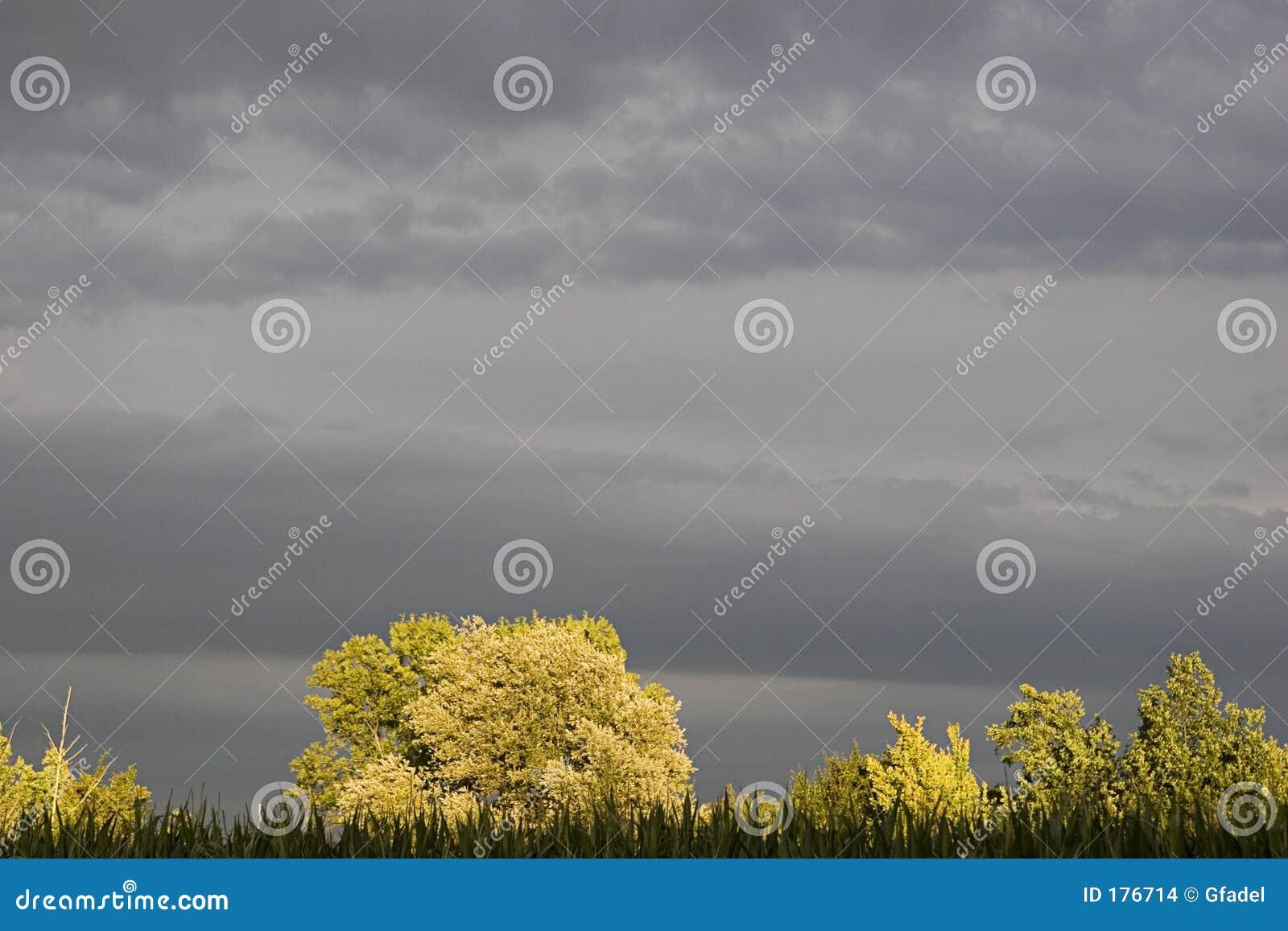 Sturm-Wetter