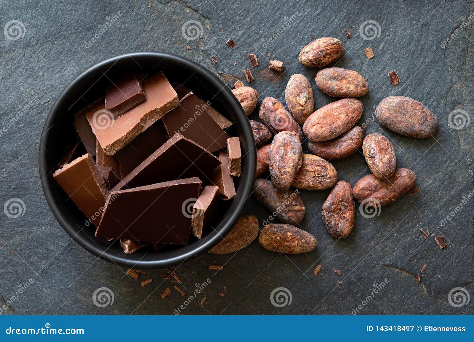 Stycken av mörker och mjölkar choklad i svart keramisk bunke bredvid kakaobönor som isoleras på grå färger, kritiserar från över