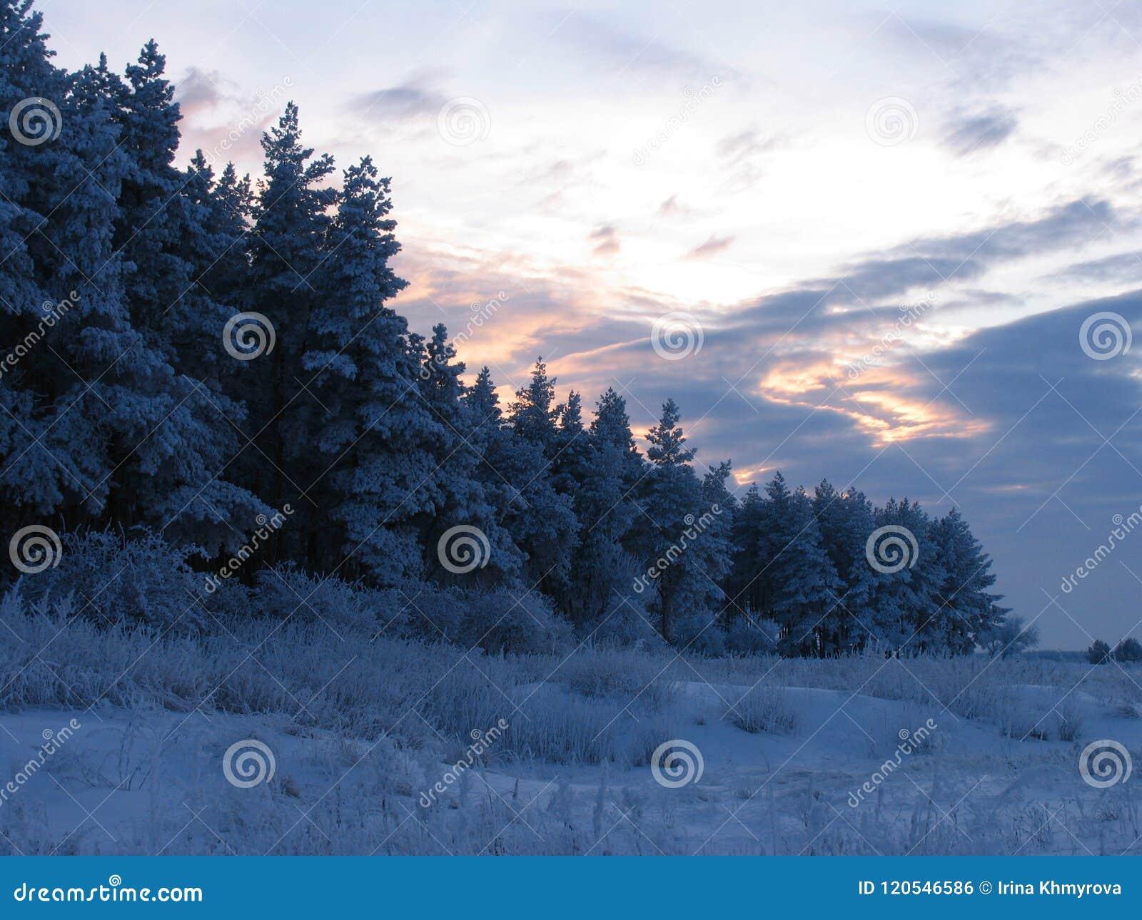 Styczeń 33c krajobrazu Rosji zima ural temperatury