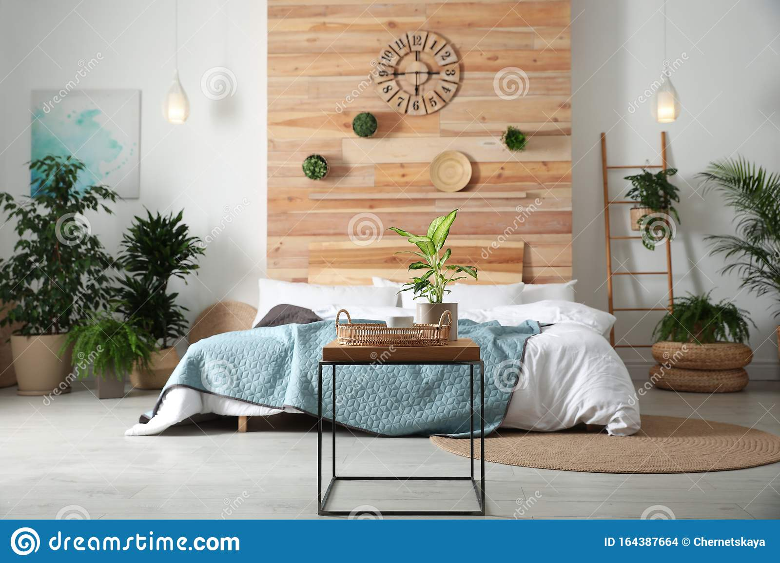 Stylish Bedroom Interior With Plants Home Design Ideas Stock Photo Image Of Contemporary Botanical 164387664