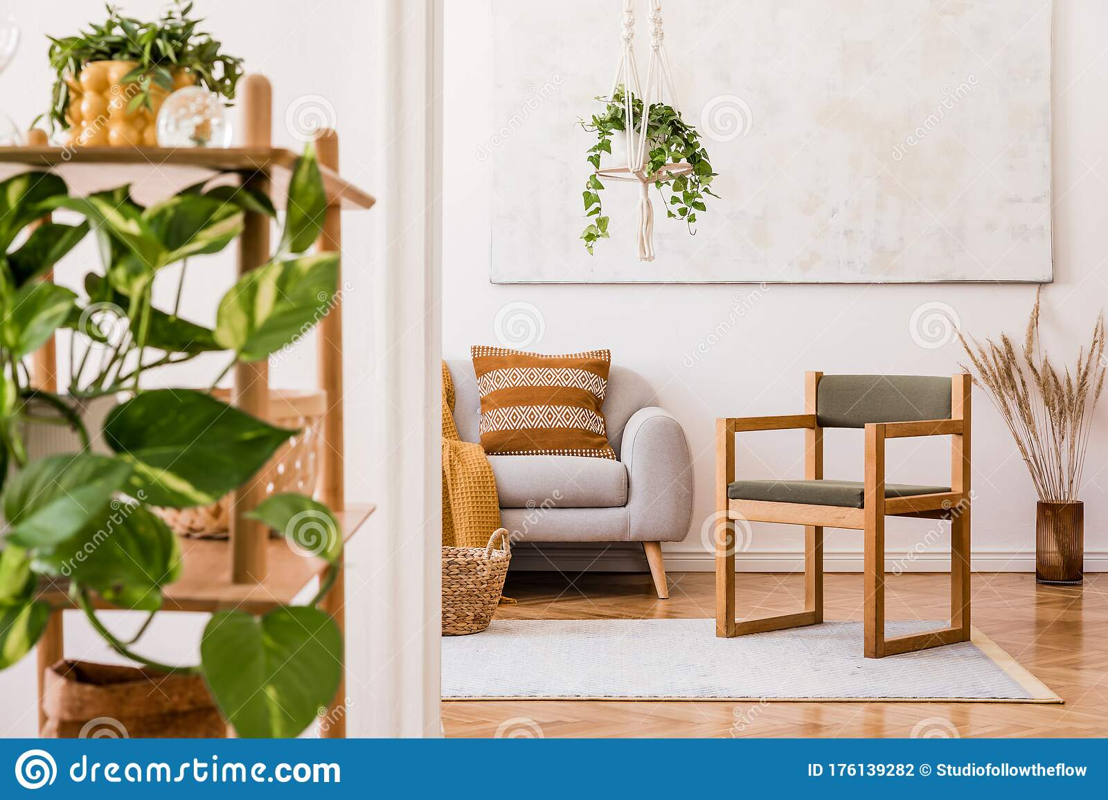 Modern Boho Interior Of Living Room At Cozy Apartment With Grey Sofa And Wooden Armchair Stock Photo Image Of Hanging Arrangement 176139282