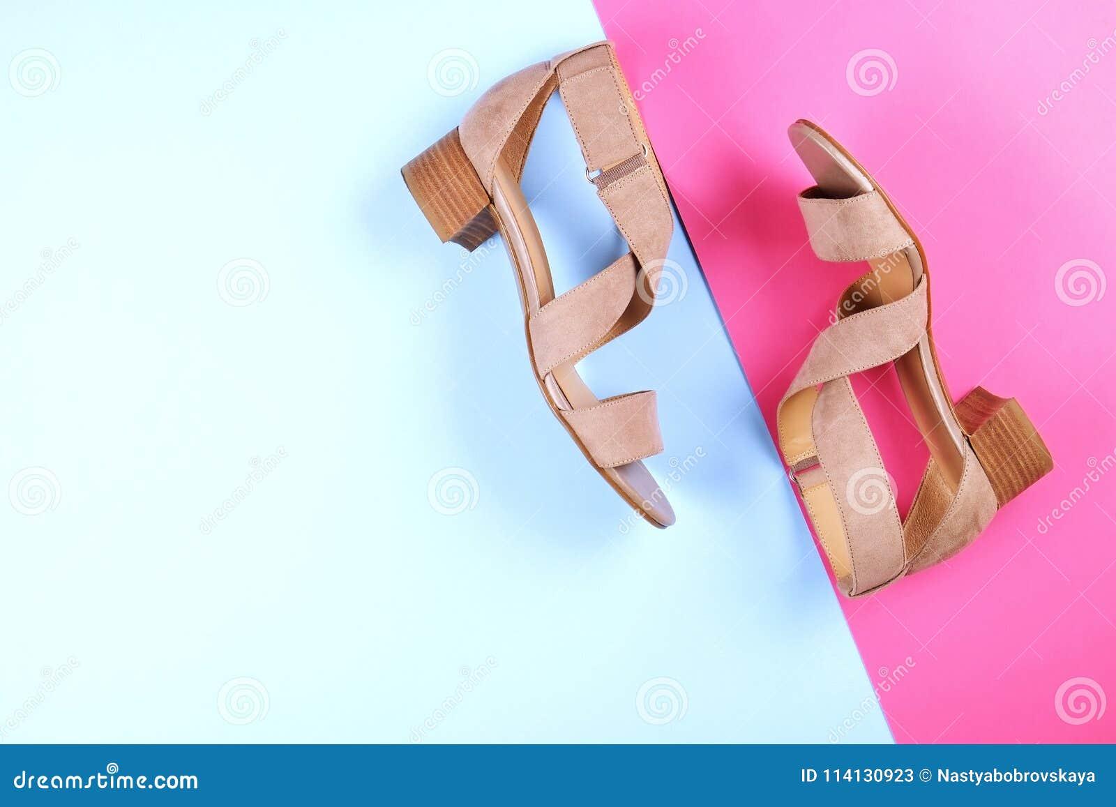 03320c31c4153 Top View Of Fashionable Feminine Medium Heeled Women`s Leather Shoes ...