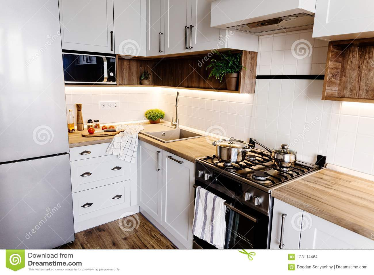 Stylish Kitchen Interior With Modern Cabinets And Stainless Steel Appliances In A Luxury New House Kitchen Design In Scandinavia Stock Photo Image Of Faucet Refrigerator 123114464