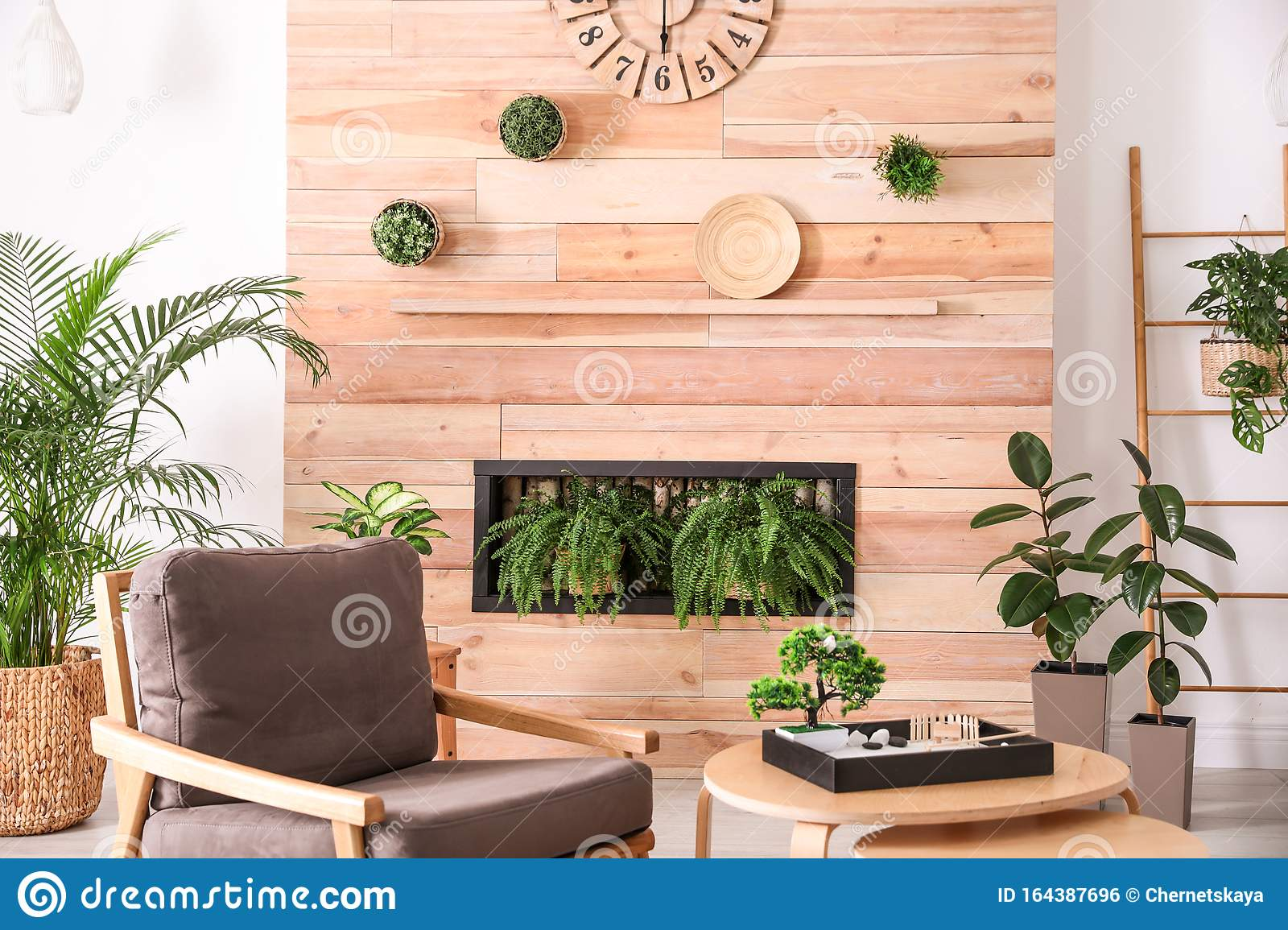 Stylish Living Room Interior With Armchair Plants And Miniature Zen Garden Home Design Ideas Stock Photo Image Of Decor Fern 164387696