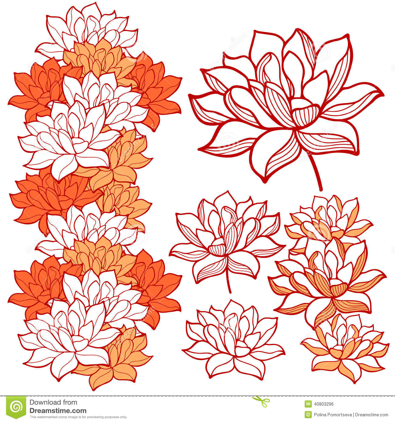 Lotus Flower Design Wall Paper : Stylish lotus flowers ornaments stock vector image
