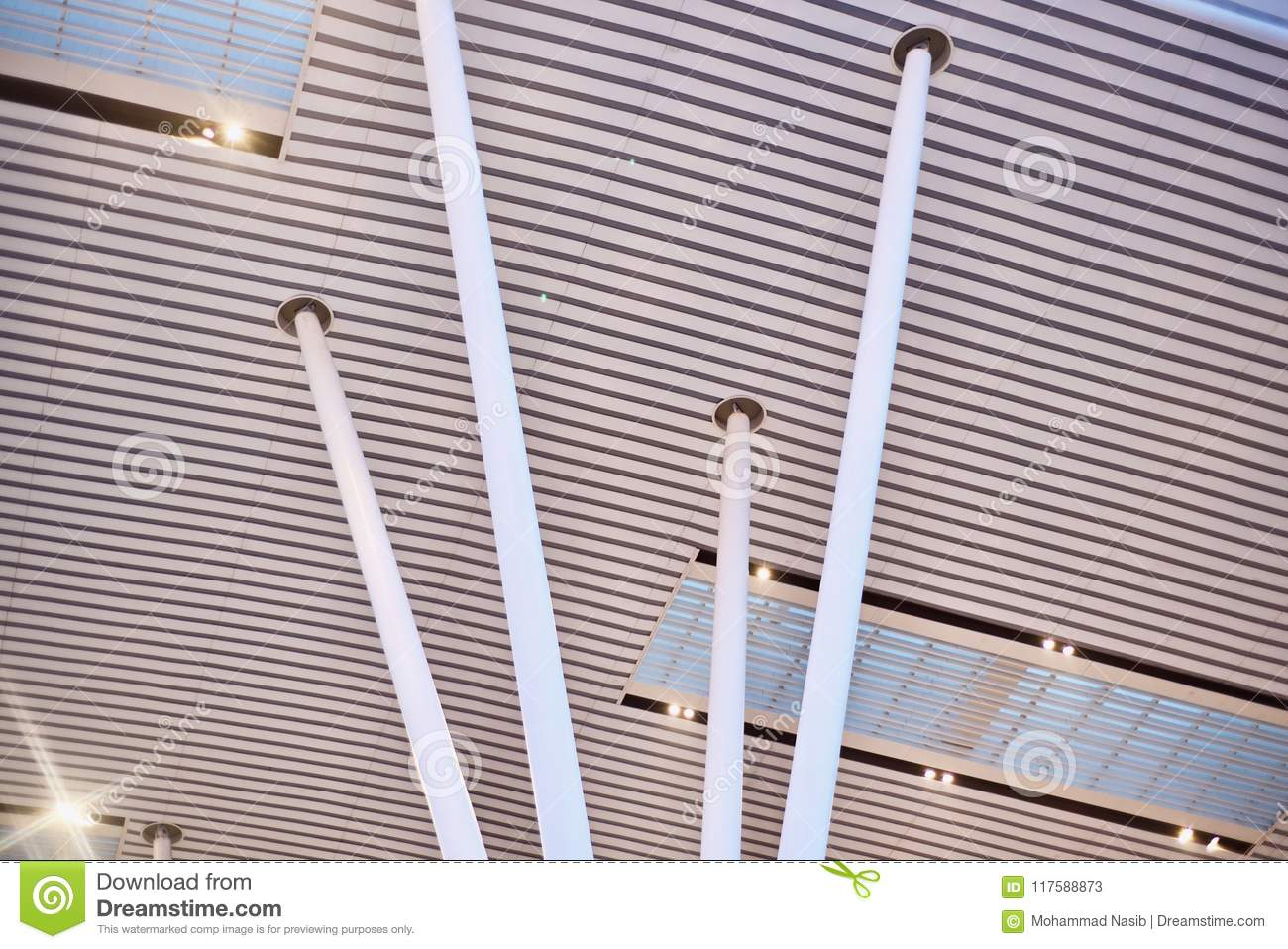 Download Stylish Metallic Pillars Of An Architectural Building Unique Photo Stock Image - Image of convention, photo: 117588873